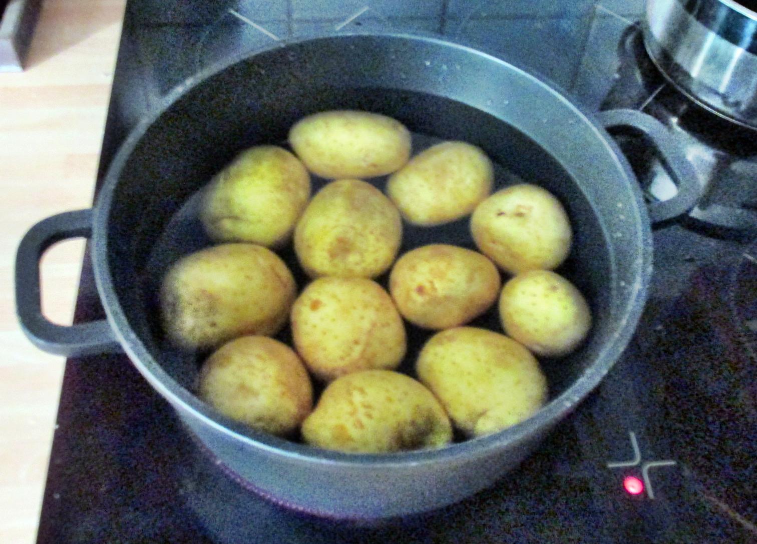 Kartoffelsalat,Ei,Gurkensalat - 25.7.15   (2)