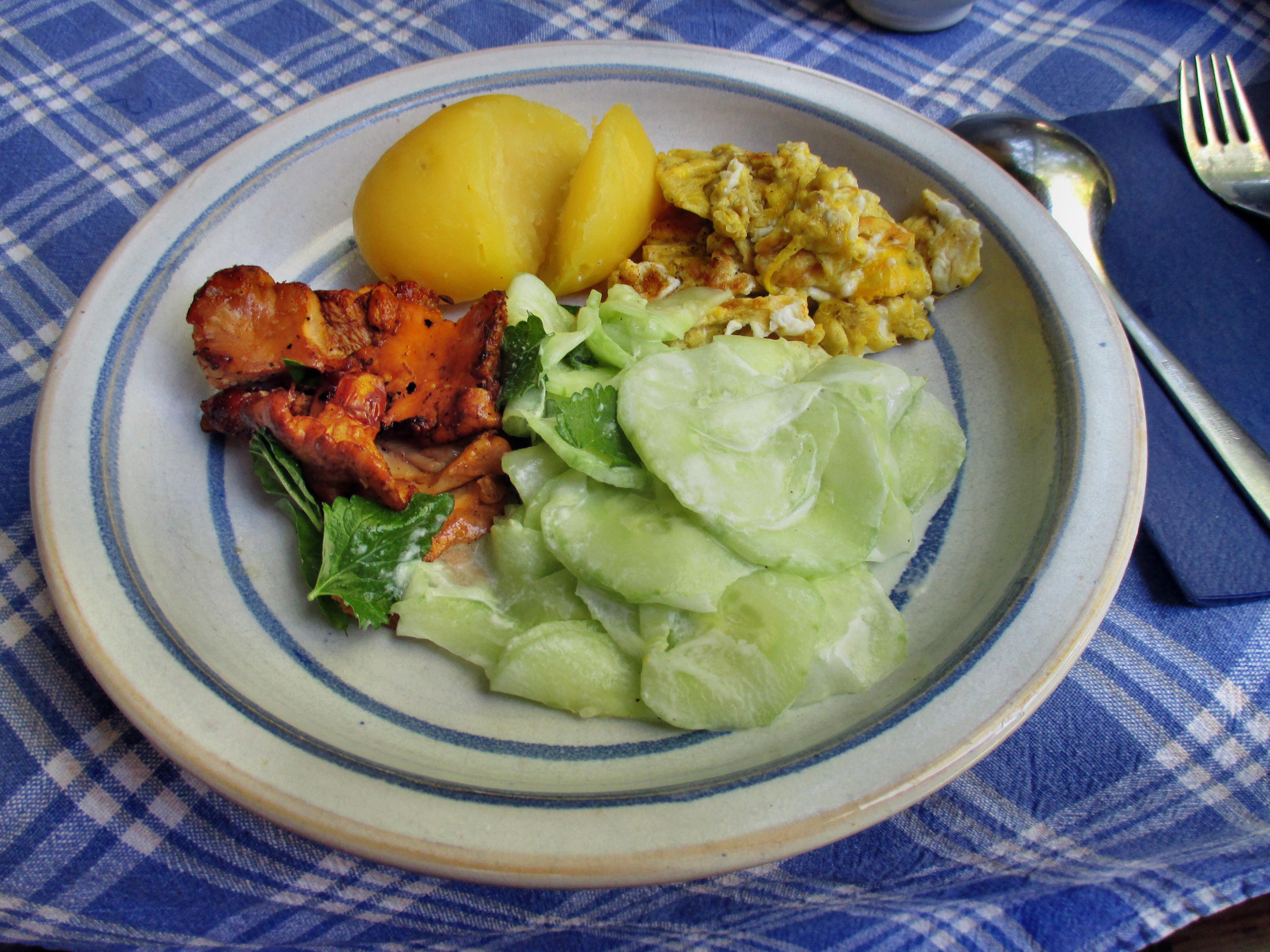 Pfifferlinge,Kartoffeln,Salat -2.7.15   (5)