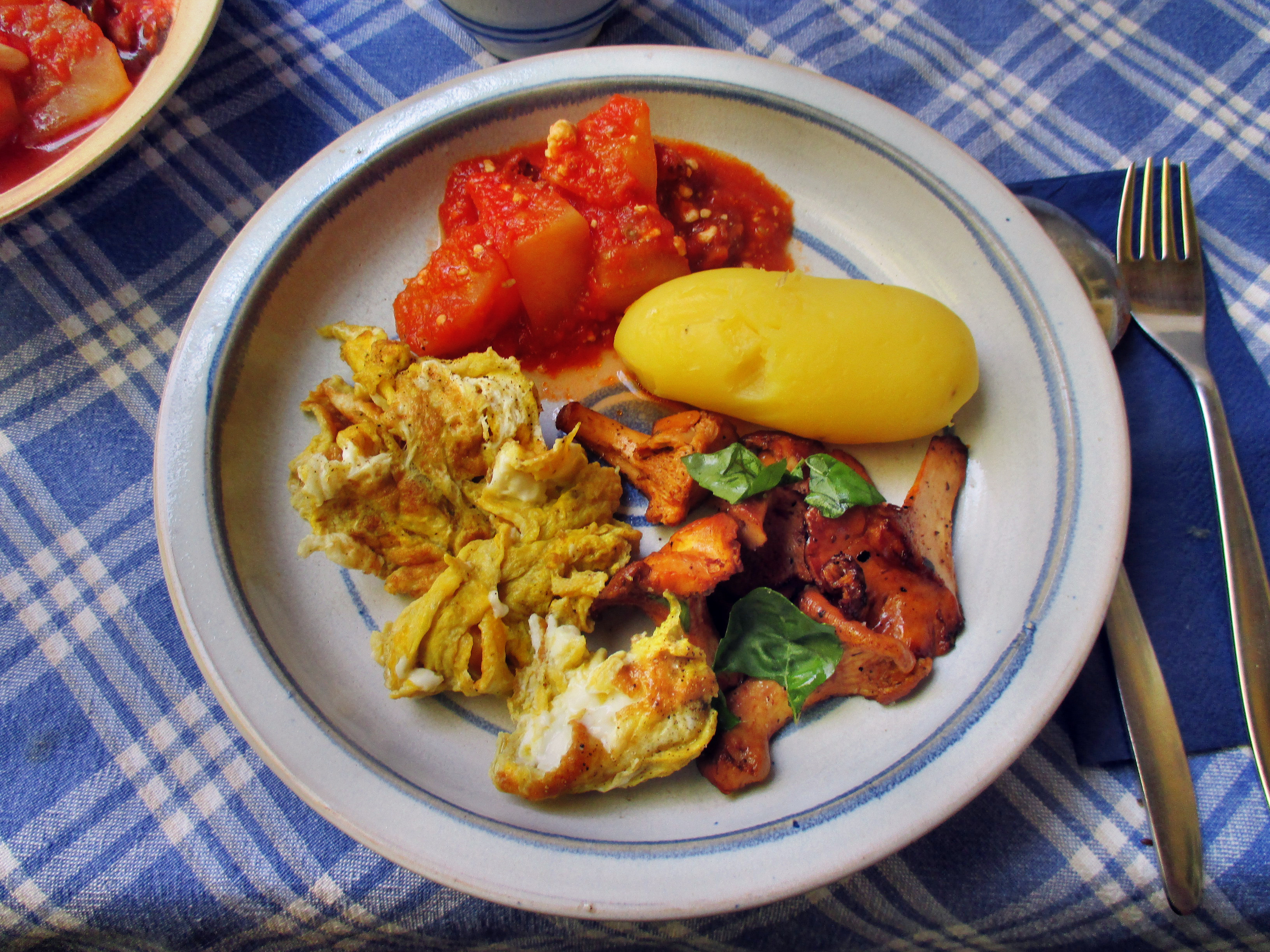 Pfifferlinge,Kartoffeln,Salat -2.7.15   (6)