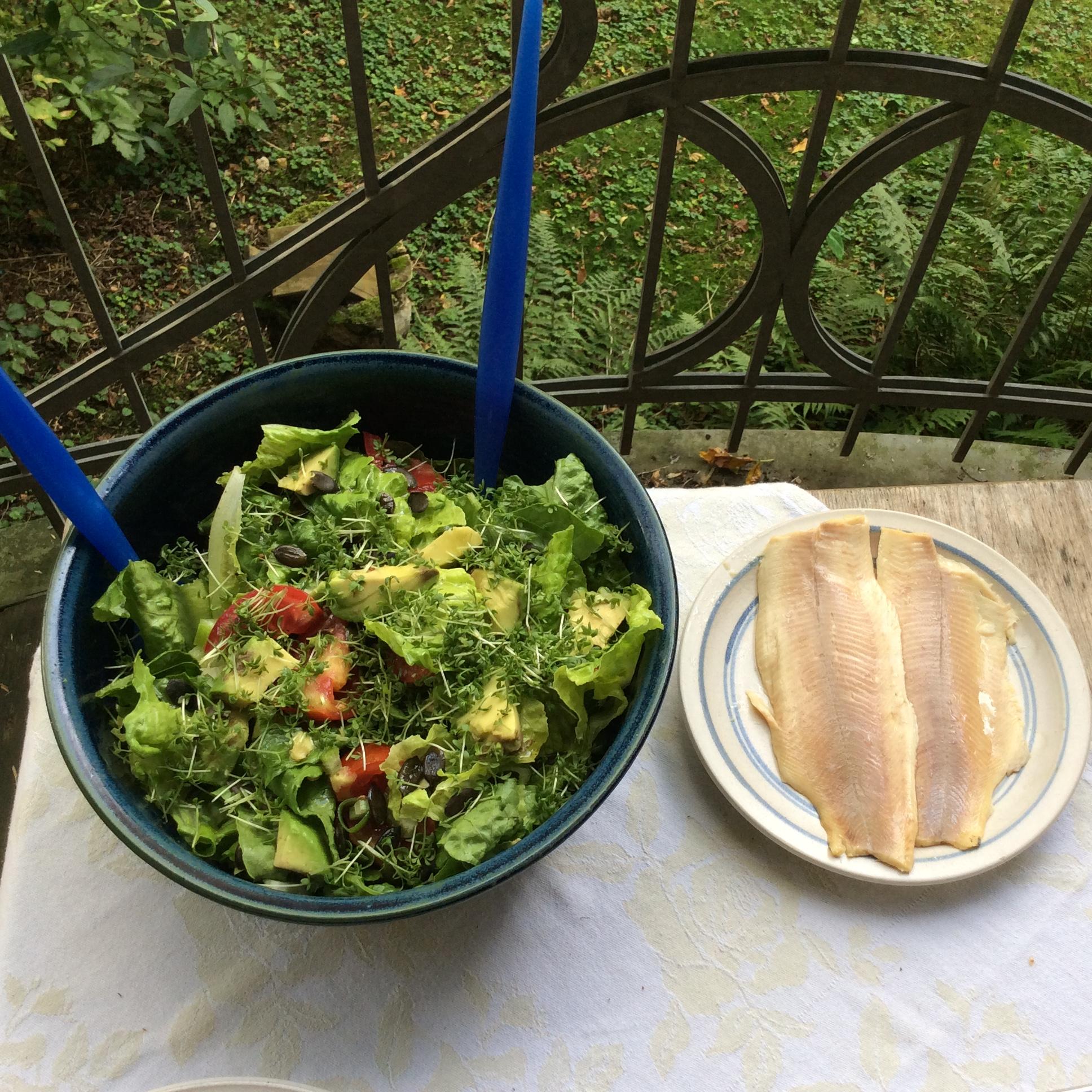 Forelle,Salat,Zucchini -25.8.15   (4)