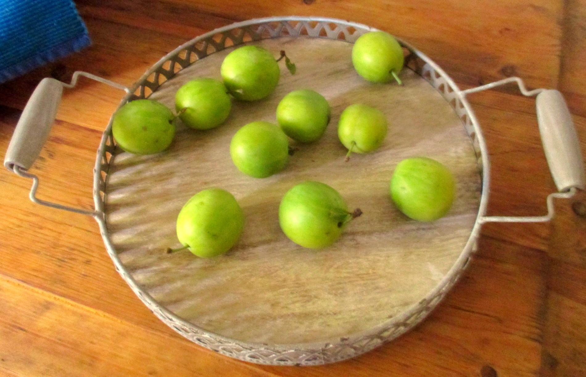 Reineclauden,Tomaten - 15.8.15   (1)