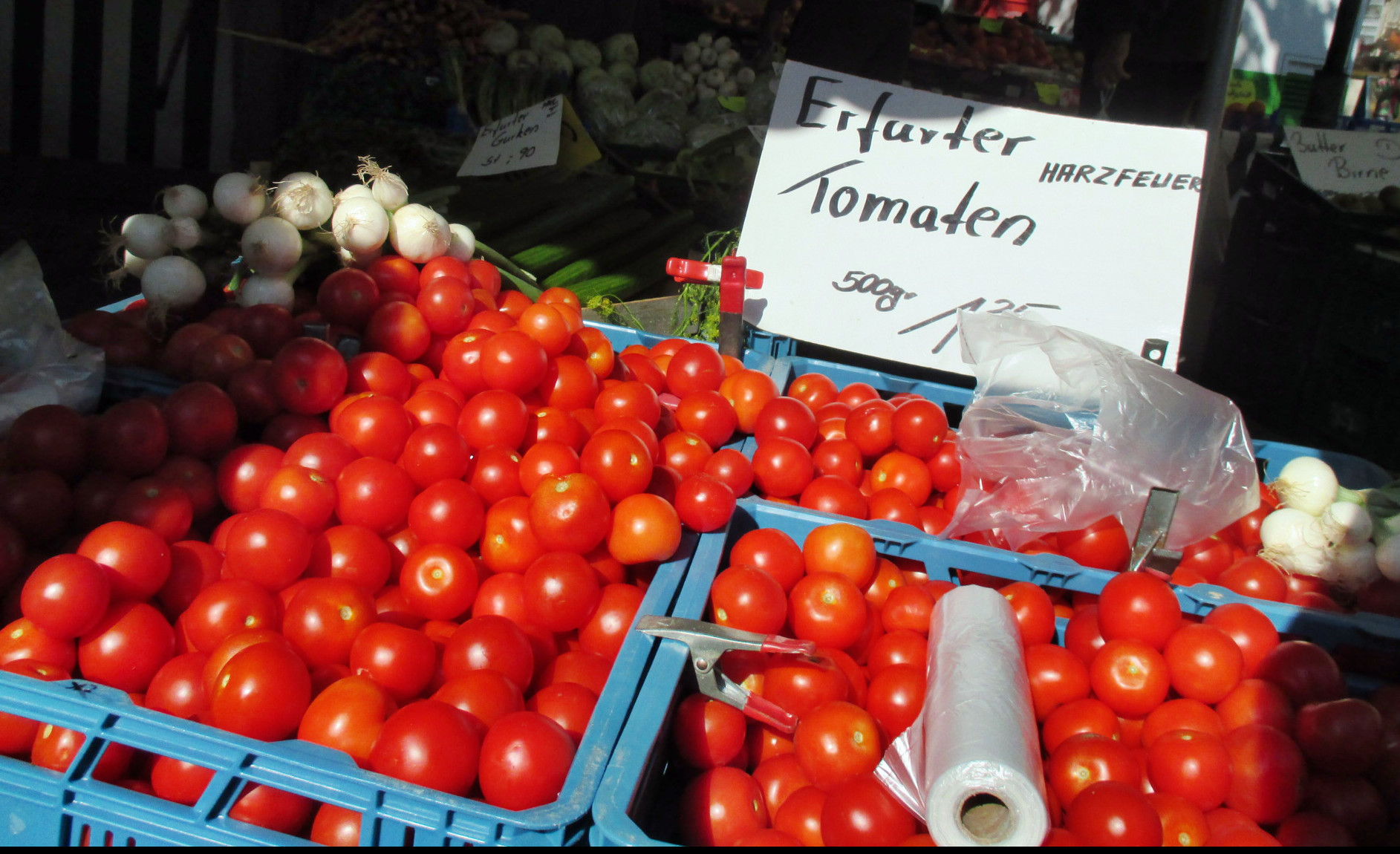Markt - Jena -12.9 (11)