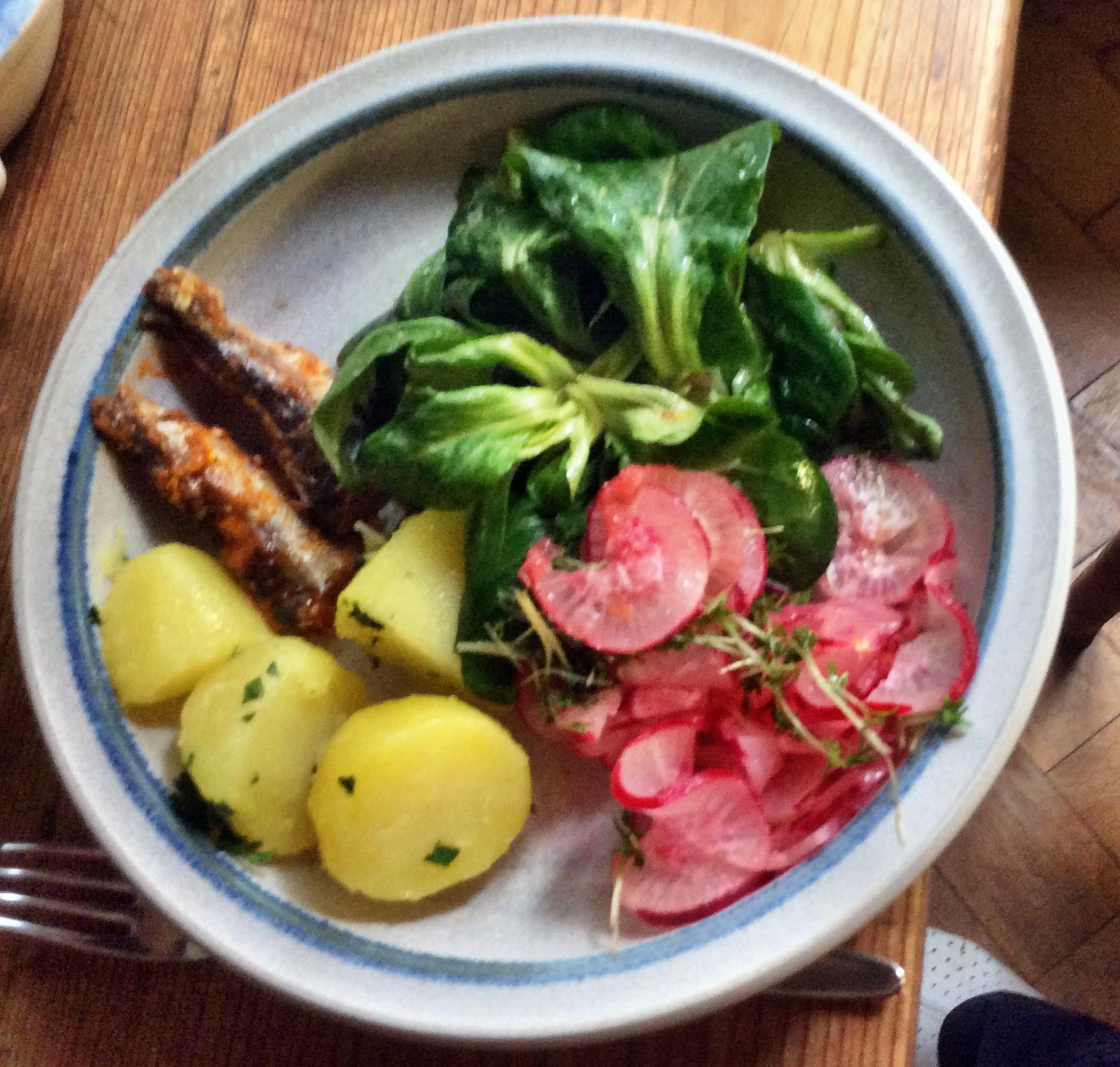 Sardinen,Salate,Kartoffeln,26.10.15   (8)