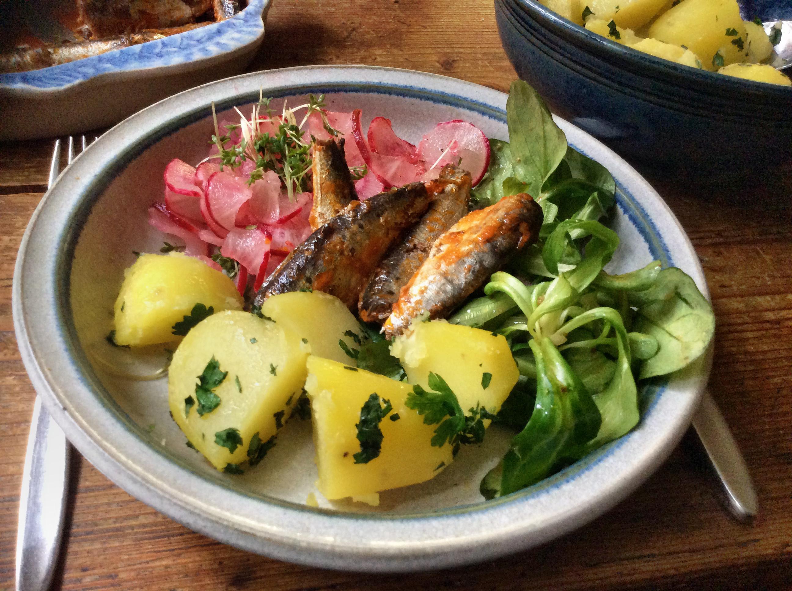 Sardinen,Salate,Kartoffeln,26.10.15   (9)