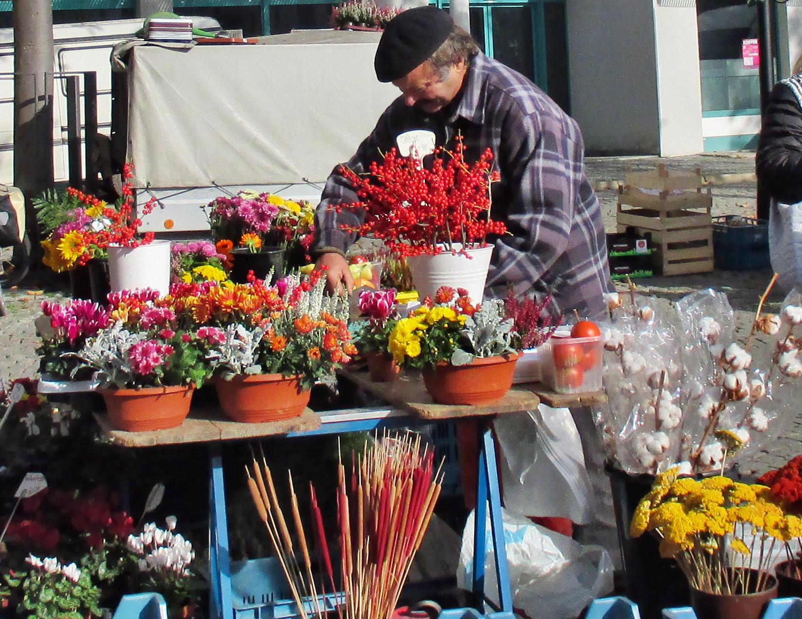 Wochenmarkt Jena -24.10.15   (27)