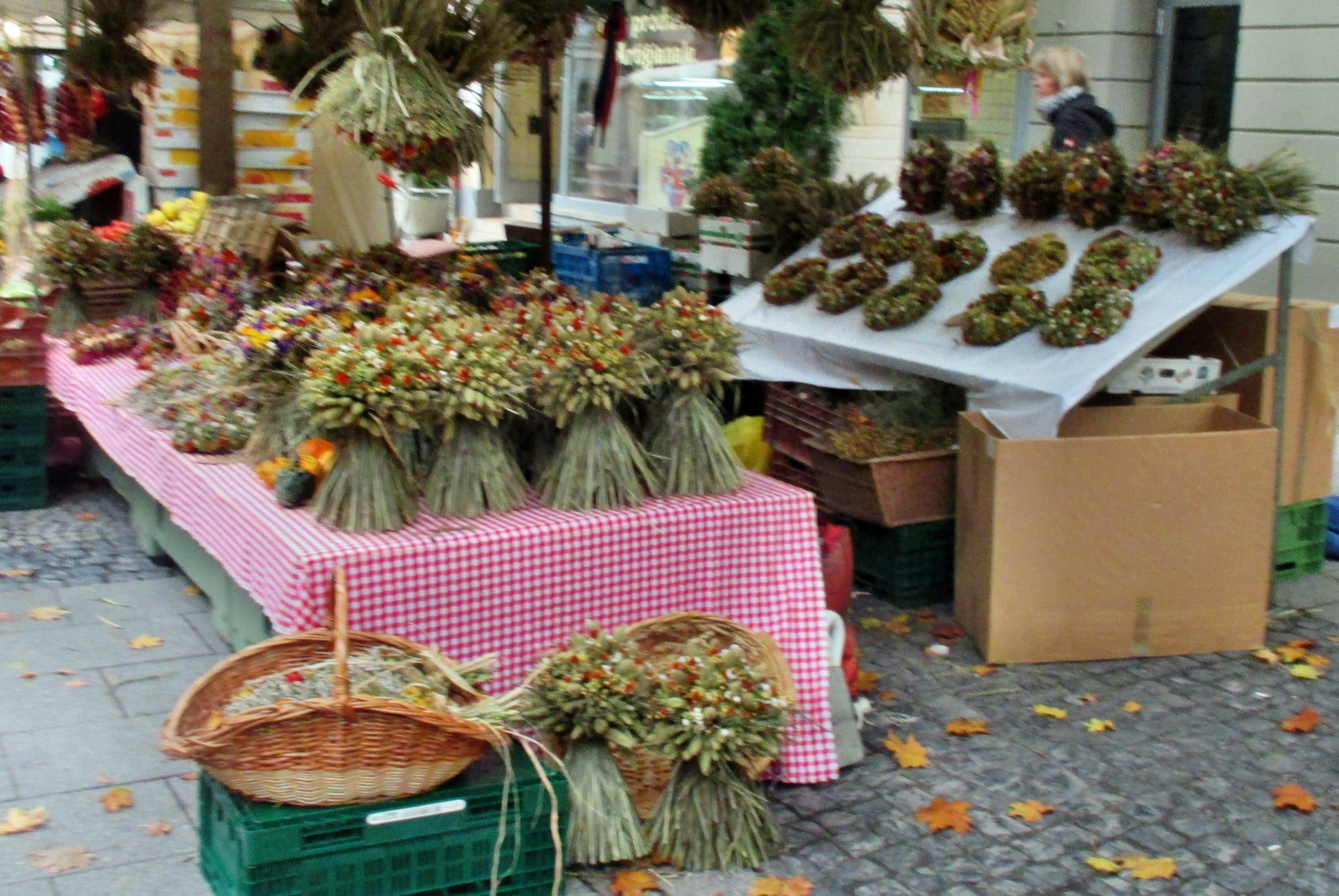 Zwiebelmarkt -9.10.15   (36)