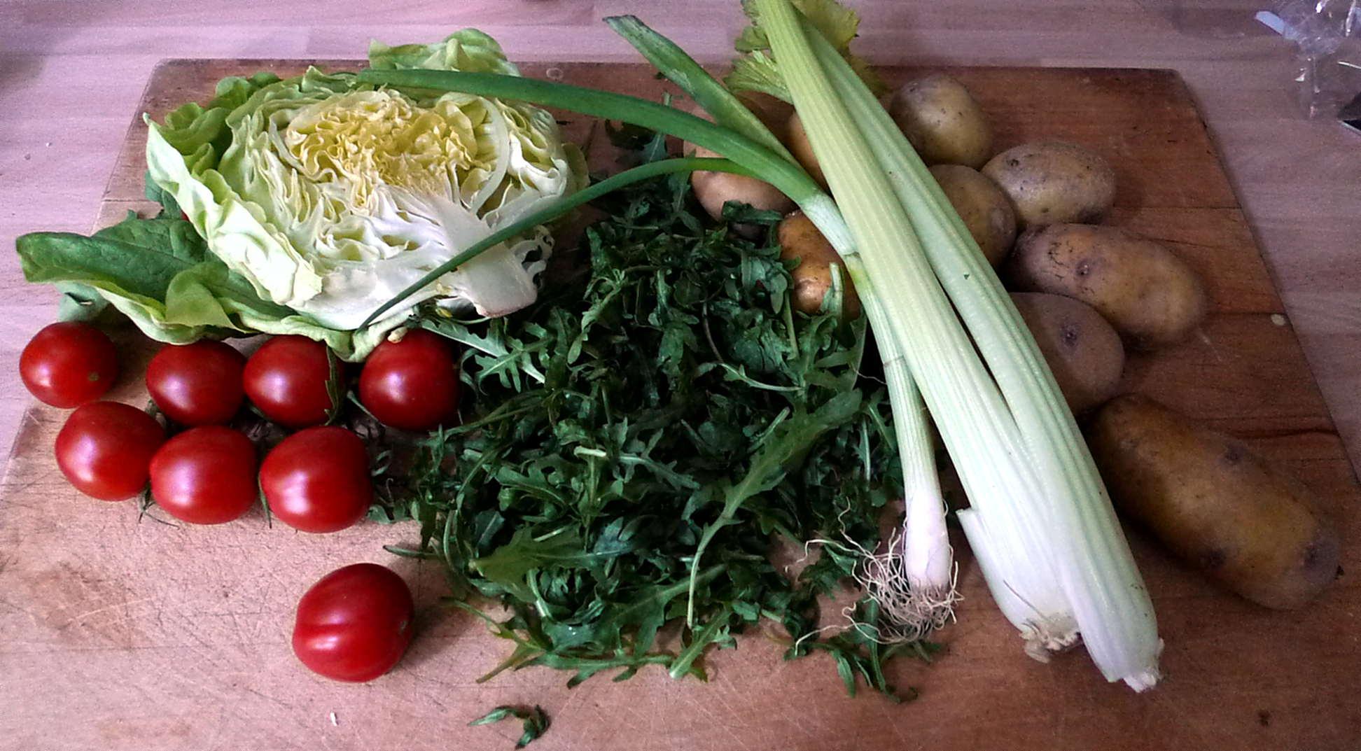 16.5.16 - Kartoffelbrei,Sauce Salte,vegetarisch (3)