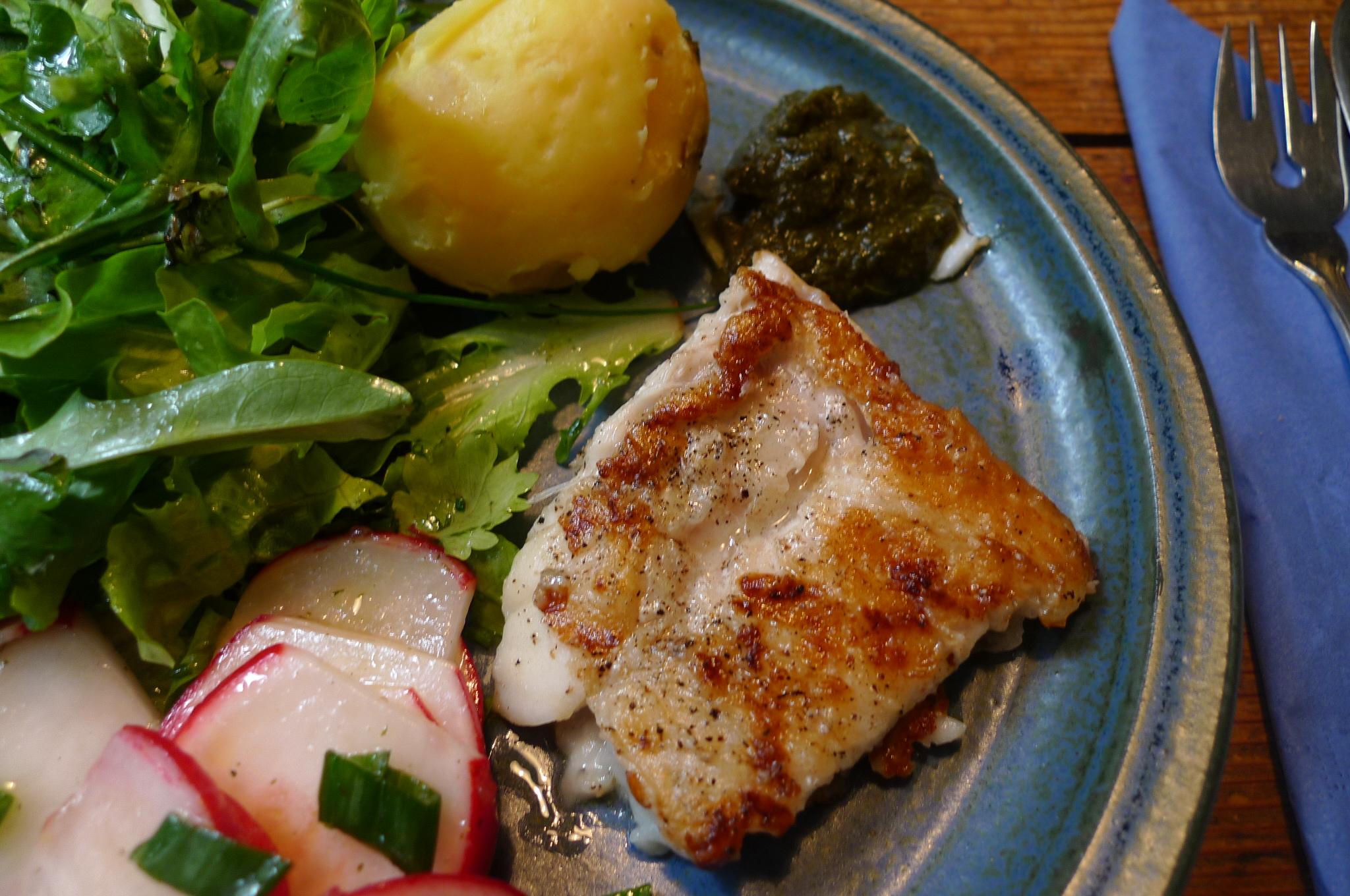 19.5.16 - Rotbarsch,Salate (8)