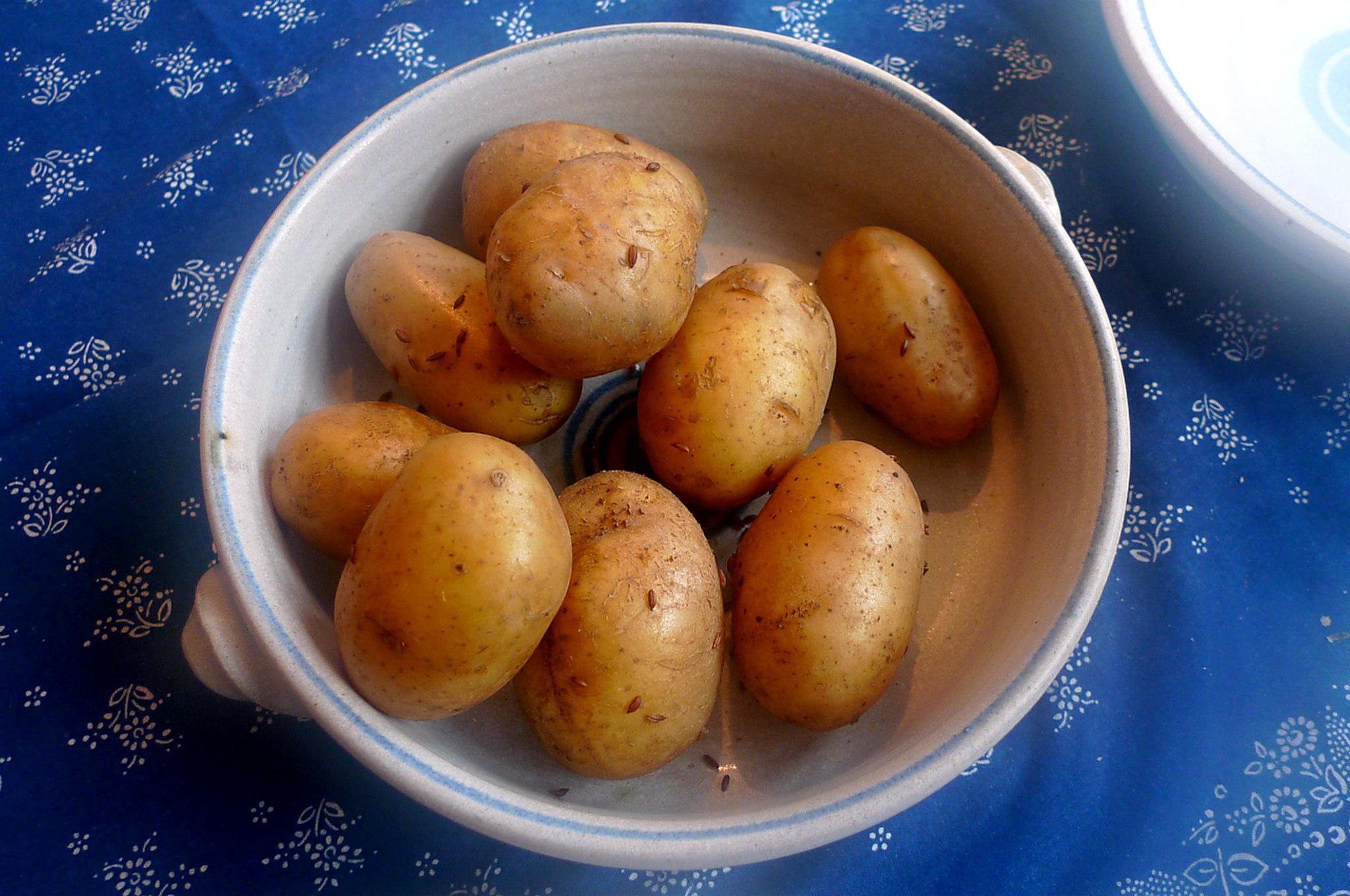 hokkaidospinaqtruhreipellkartoffelvegetarisch-7