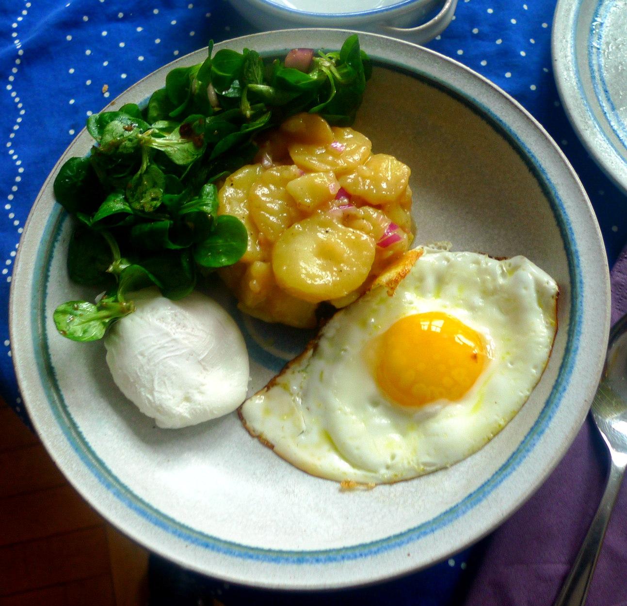 schwabischer-kartoffelsalatfeldsalatpochiertes-eispiegeleivegetarisch-17