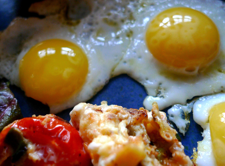 wachtel-spiegeleiruhreipellkartoffelsalat-8