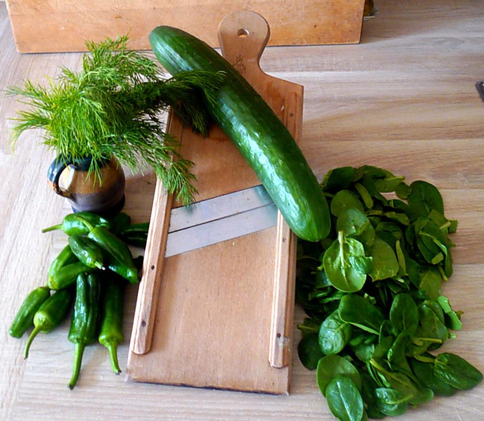 spinat-ruhreipimientospellkartoffelngurkensalat-4