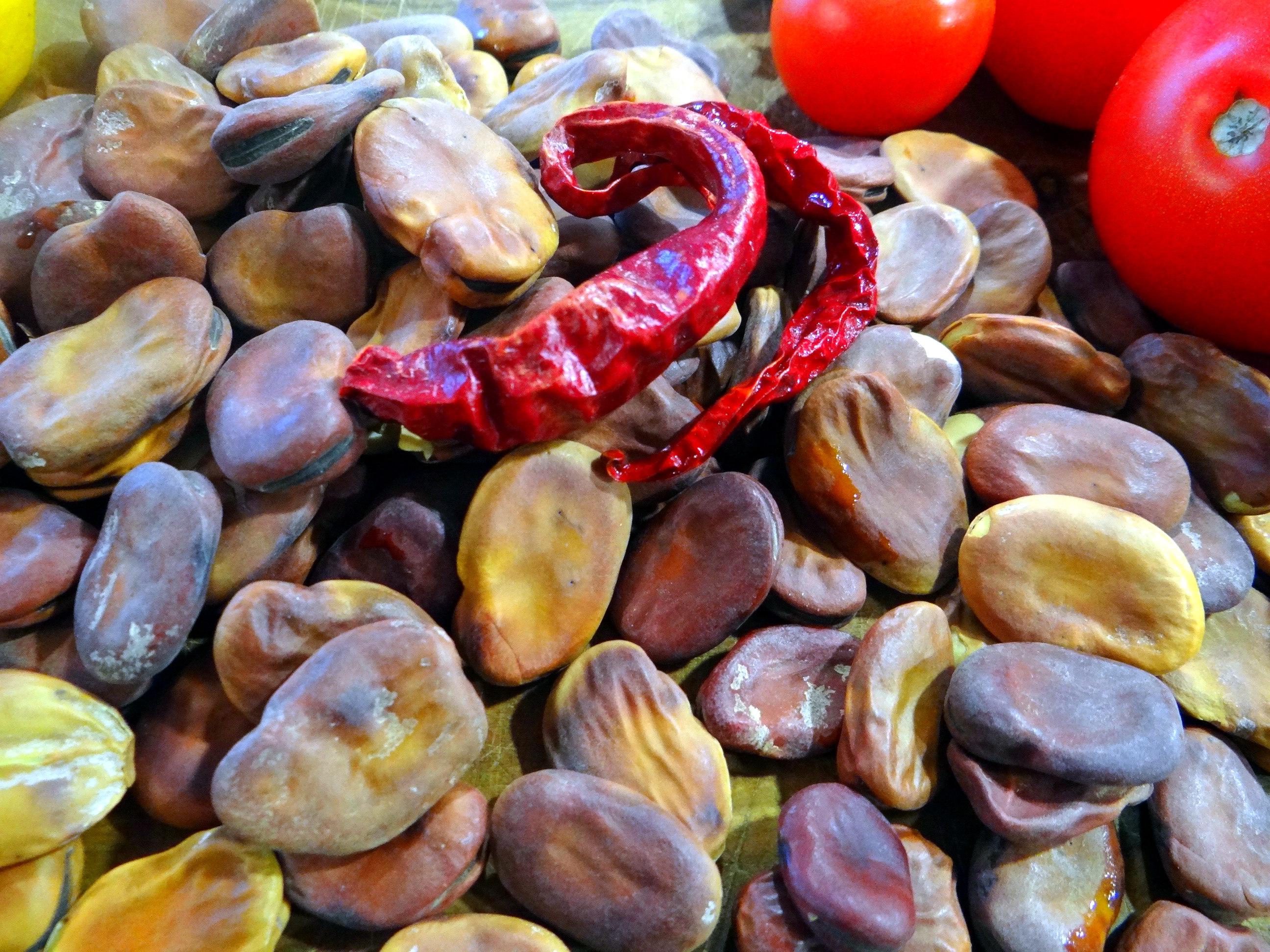 Bohnen in Tomaten (3)