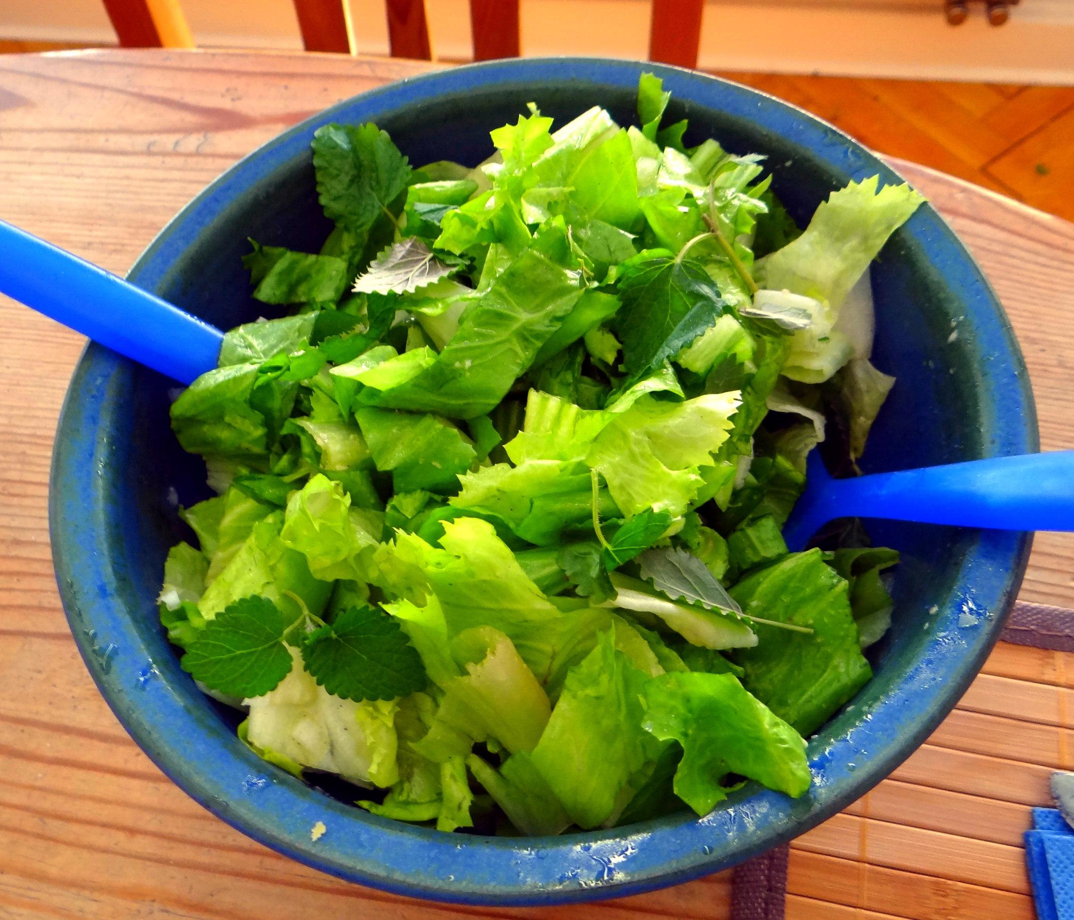 Kartoffel-Pastinaken Stampf,Kalbsleber,Spargel,pochiertes Ei,Endivien Salat (8)