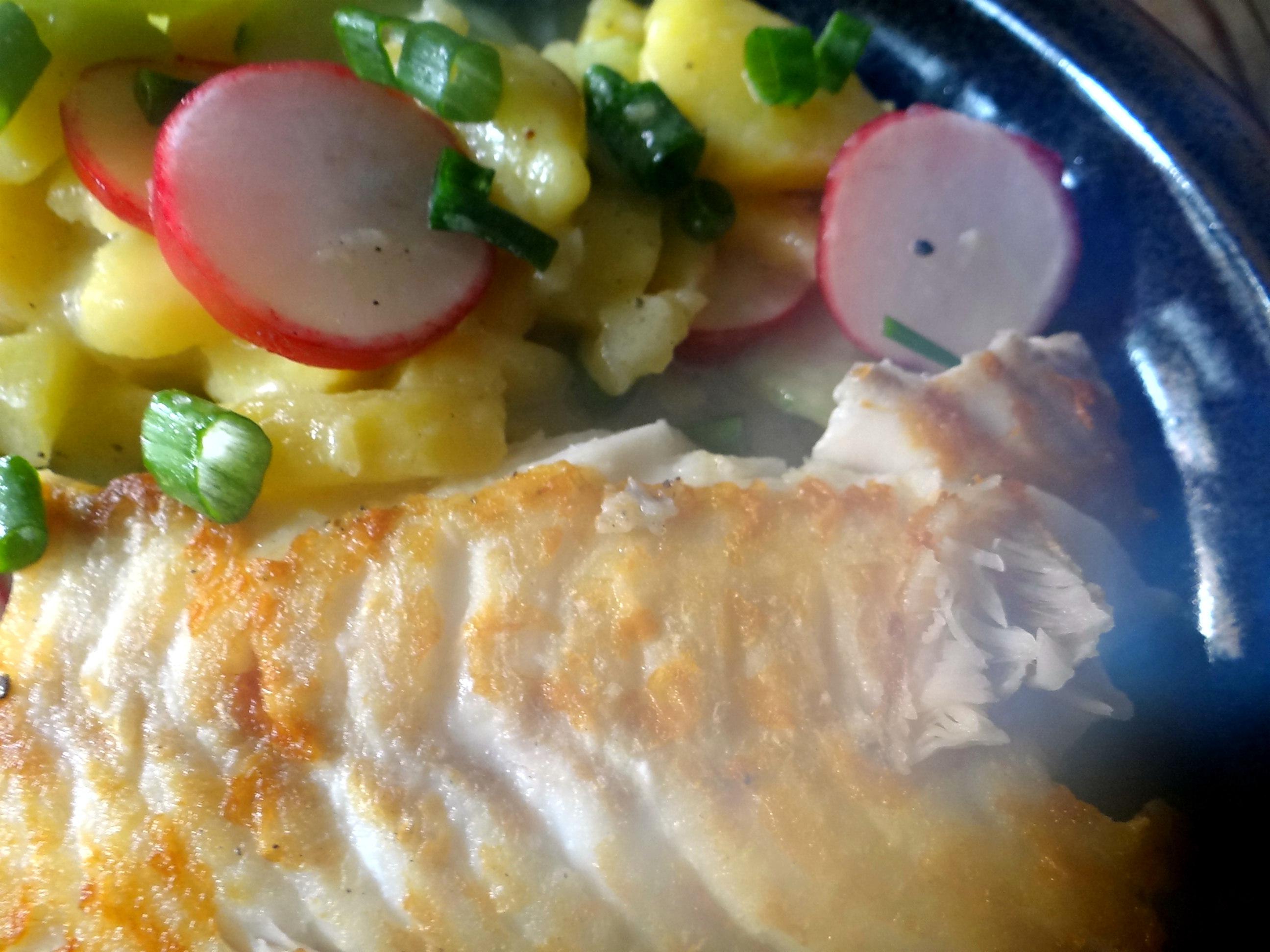 Kabeljau,Schwäbischer Kartoffelsalat (18)