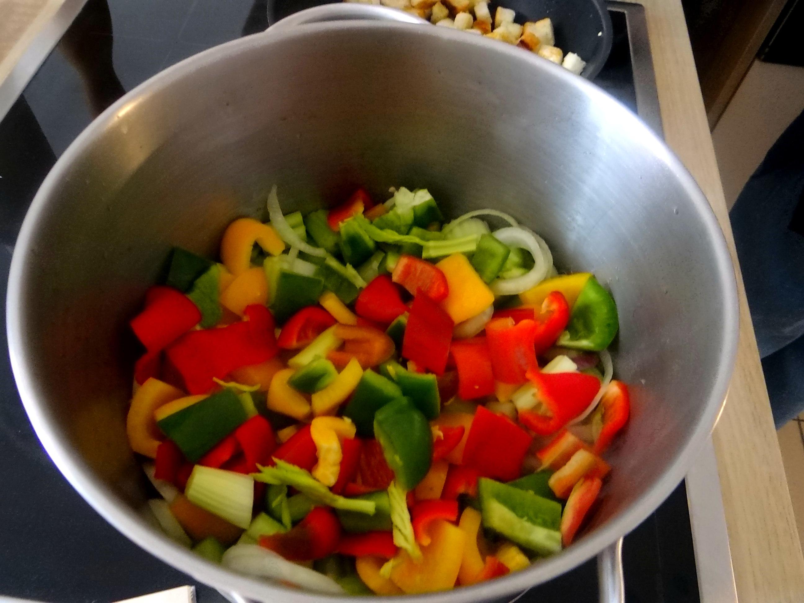 Minestra mit Bleichsellerie un Paprika,Obstsalat,vegetarisch (9)