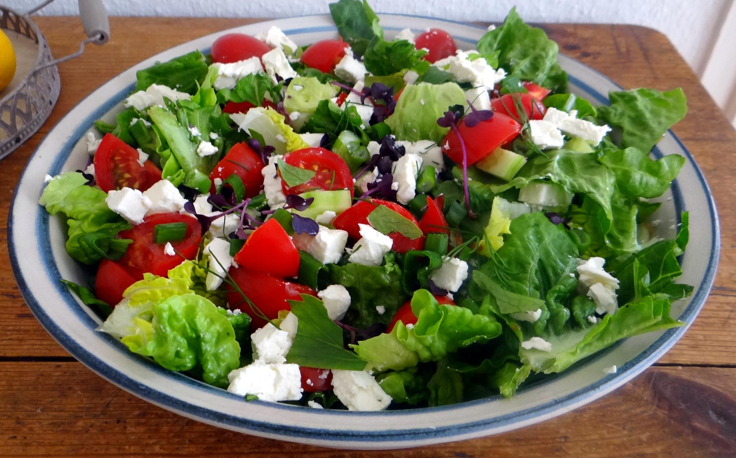 Salat,Karotten,Bratkartoffeln,Spiegelei (10)