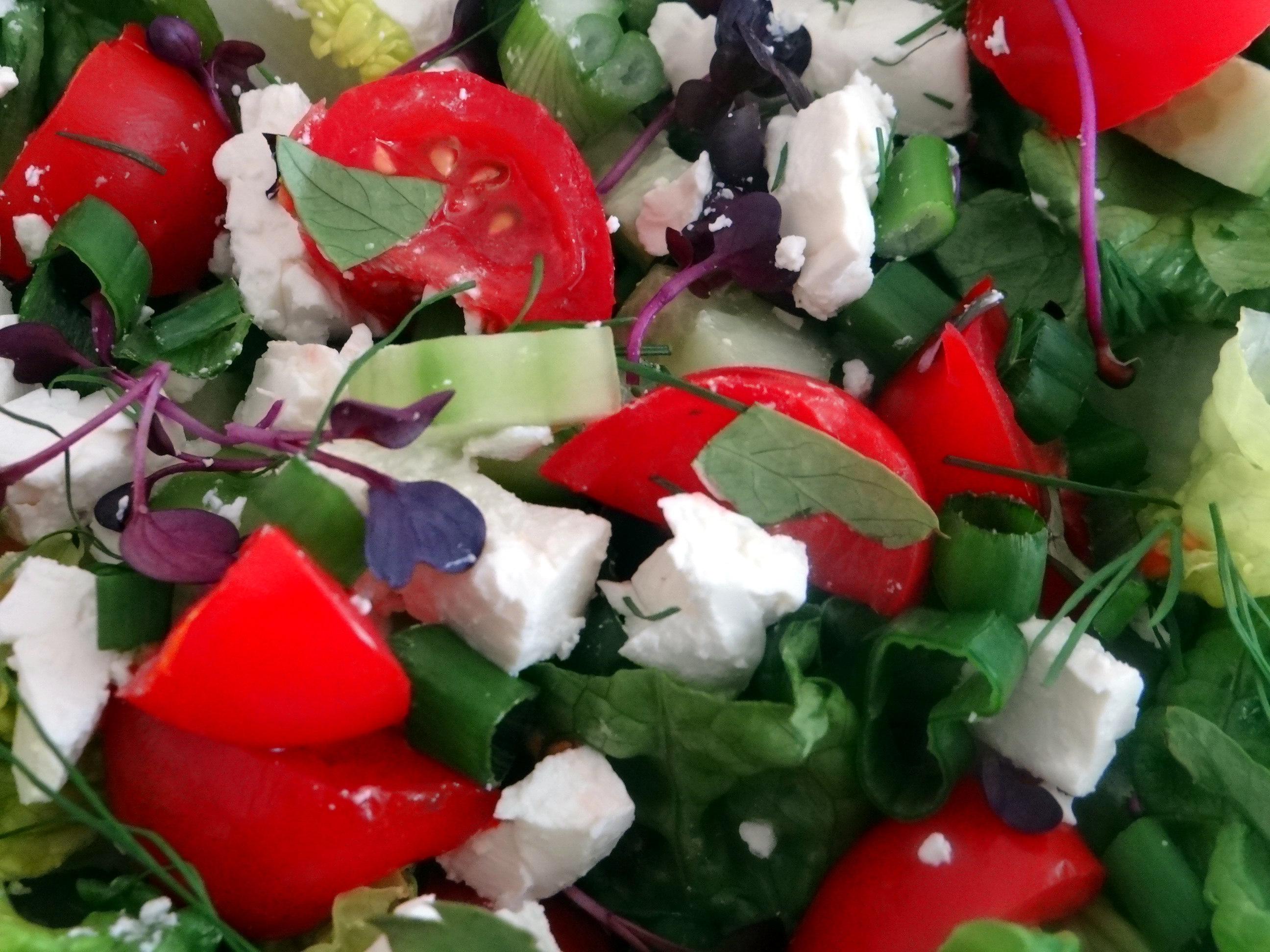 Salat,Karotten,Bratkartoffeln,Spiegelei (11)