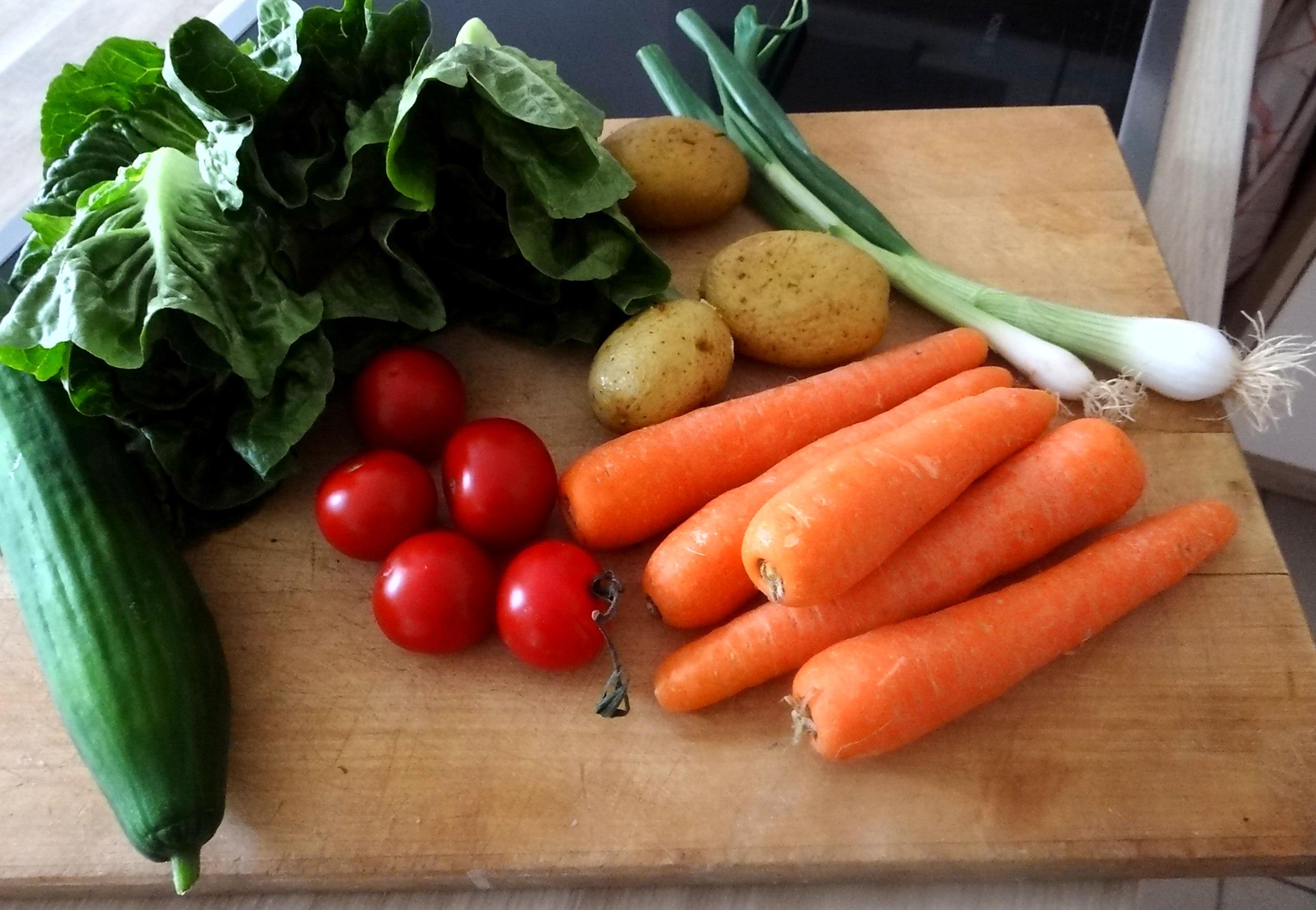 Salat,Karotten,Bratkartoffeln,Spiegelei (7)