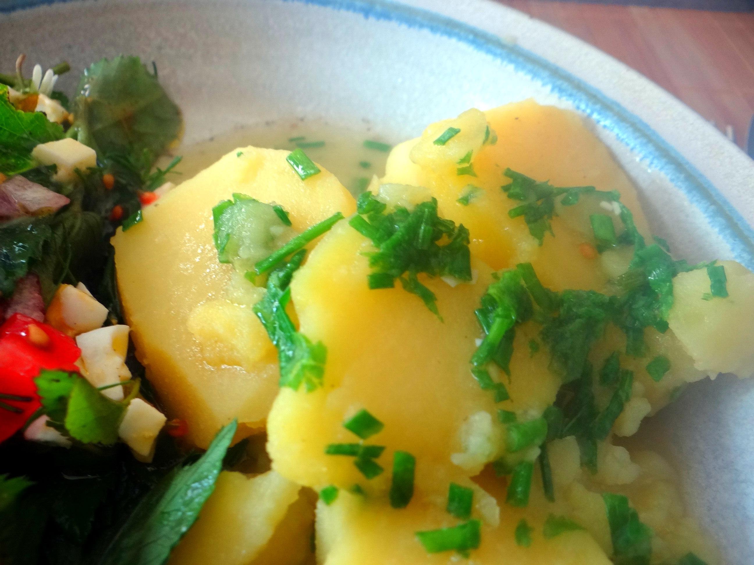 Wildkräuter Salat,Boullion Kartoffeln (7)
