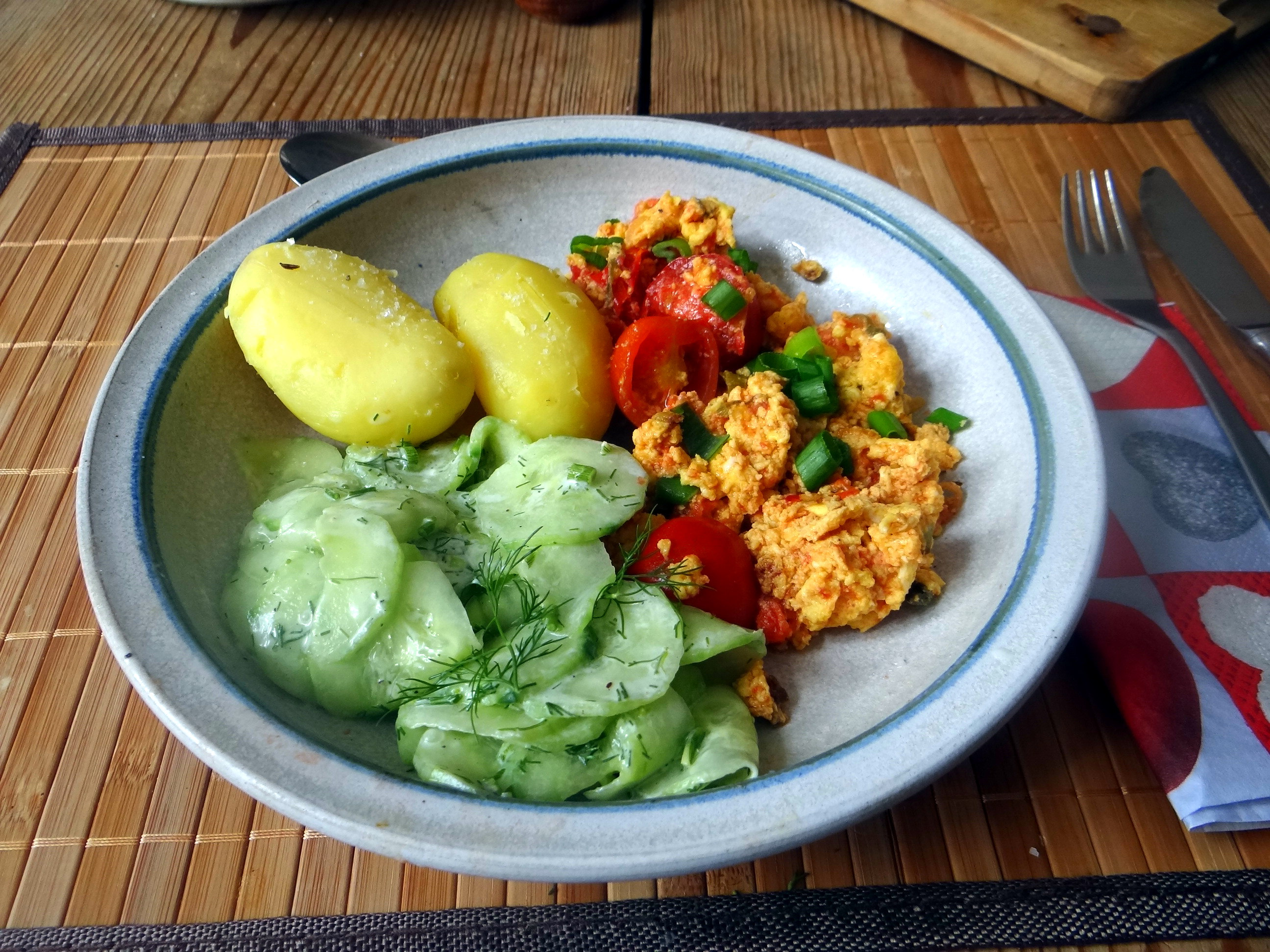Rührei mit Tomaten,Pellkartoffeln,Gurkensalat,Erdbeeren,vegetarisch (15)