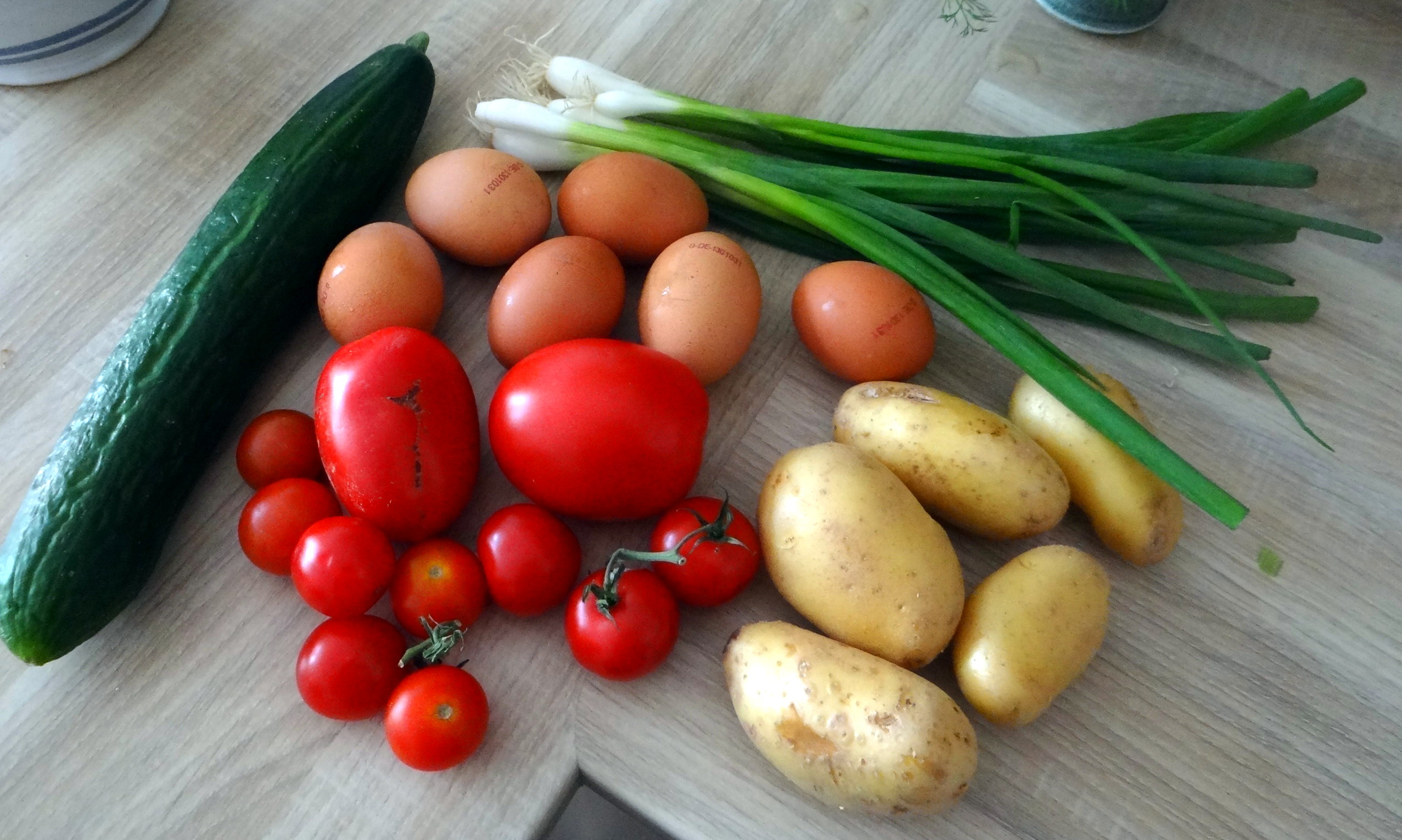 Rührei mit Tomaten,Pellkartoffeln,Gurkensalat,Erdbeeren,vegetarisch (5)