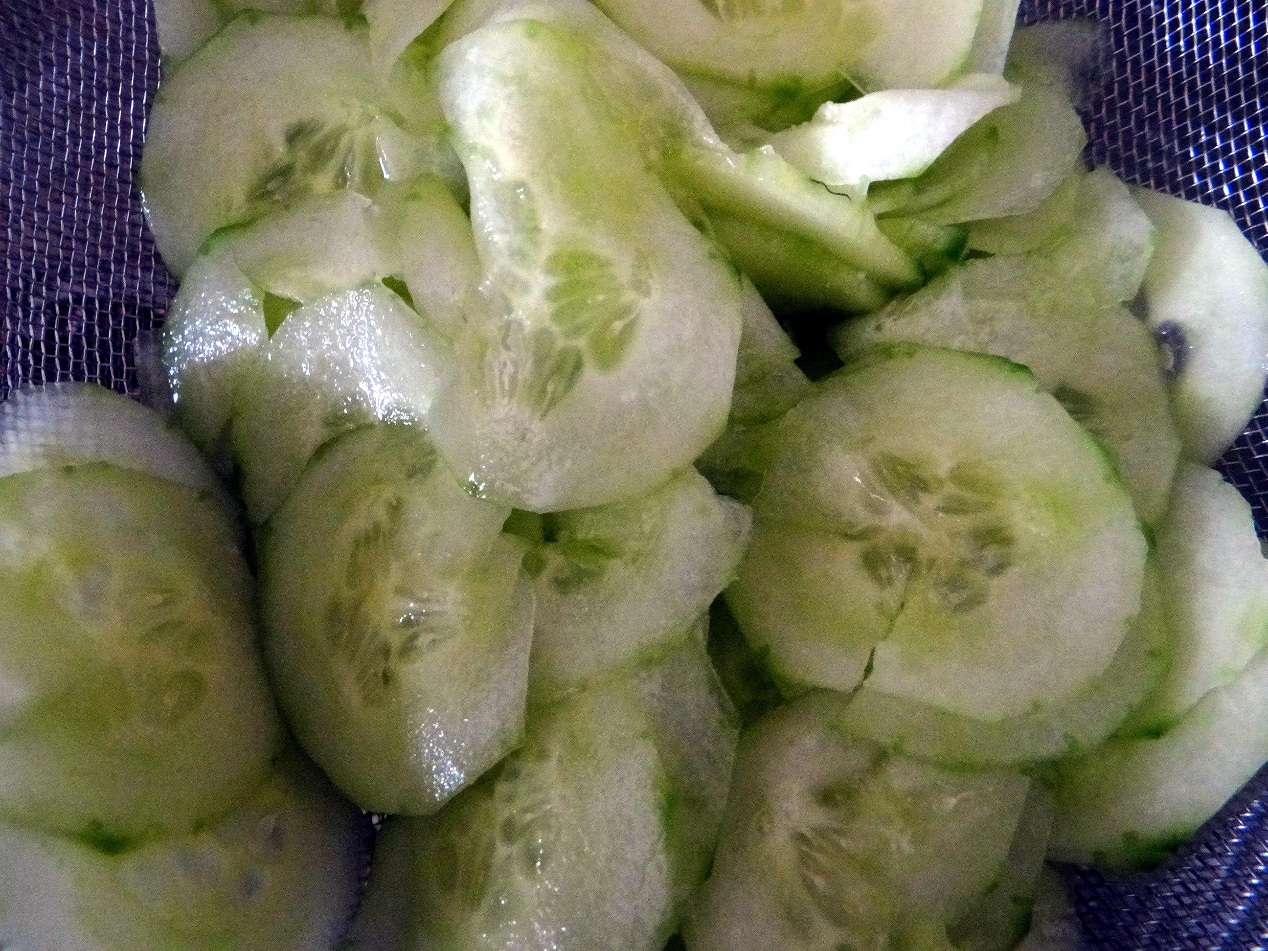 Rührei mit Tomaten,Pellkartoffeln,Gurkensalat,Erdbeeren,vegetarisch (6)