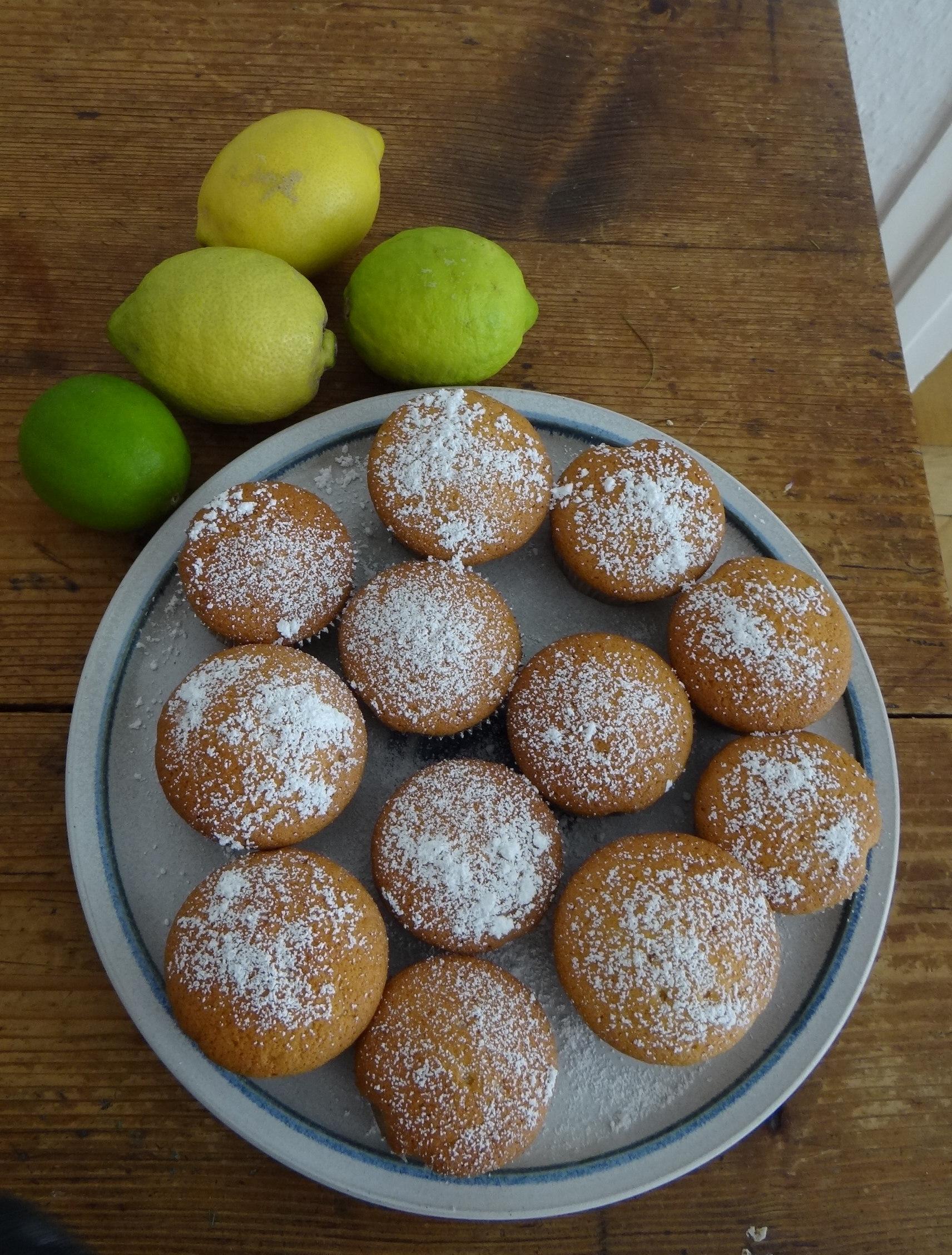 Rohgebratene Kartoffeln,Guacamole,Kohlrabisalat,Zitronenmuffins, , (21)