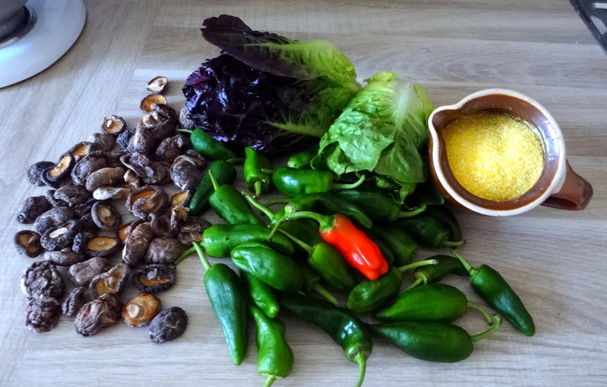 Shitake,Polenta,Pimientos,Salat, (5)