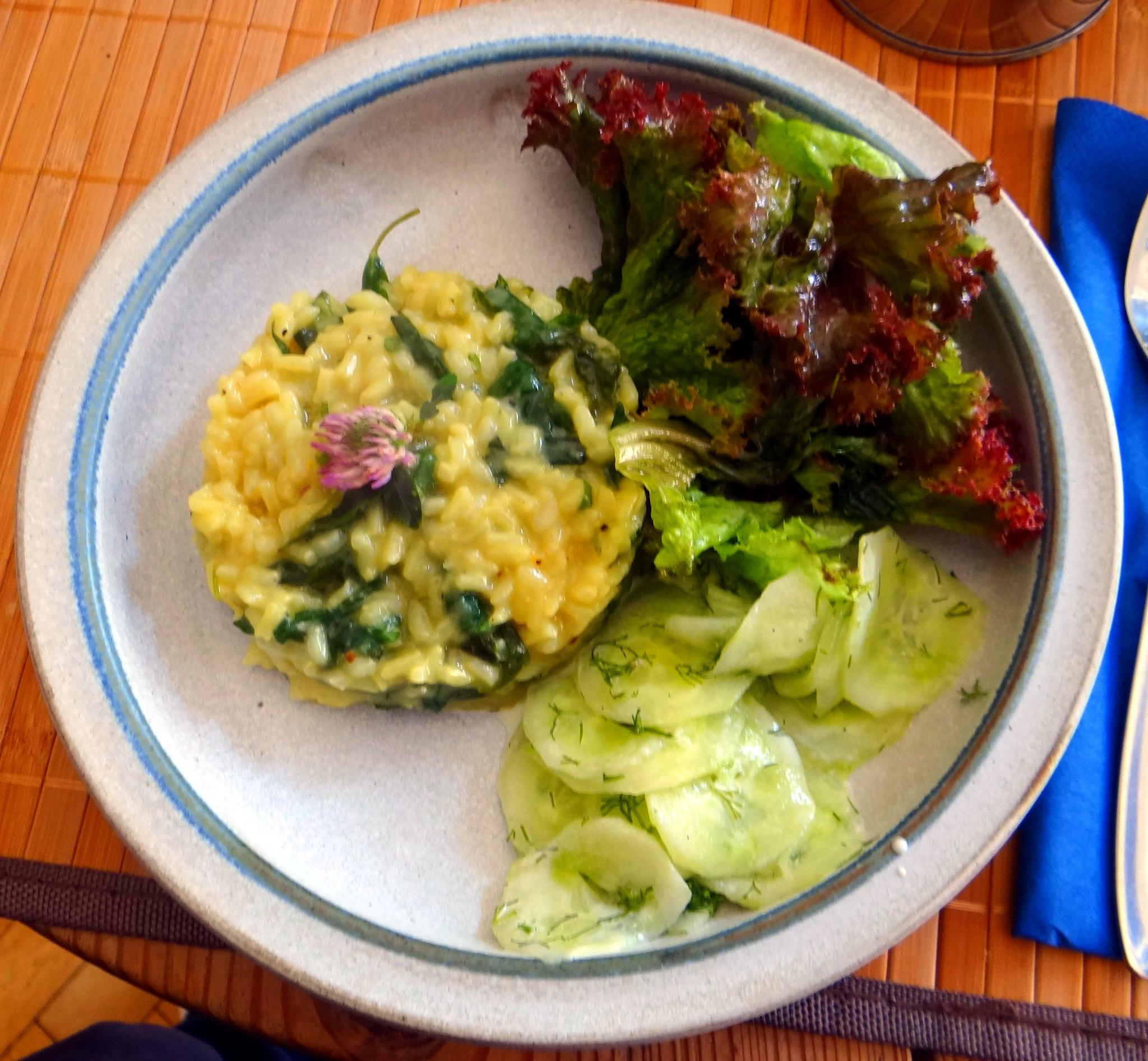 Zitronenrisotto mit Wildkräutern,Gurkensalat,Lollo Rosso,vegetarisch (1)