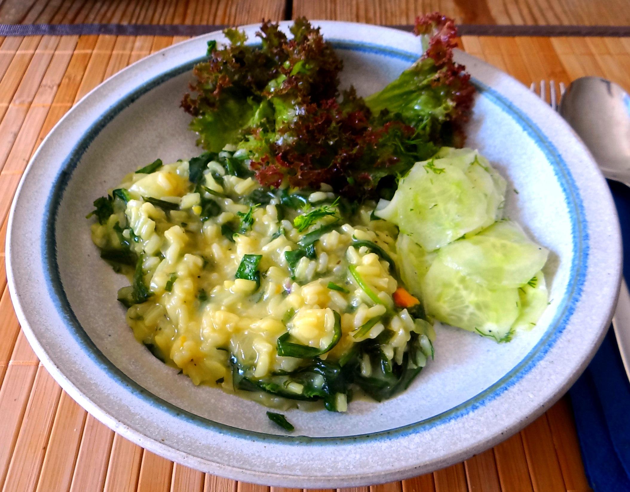 Zitronenrisotto mit Wildkräutern,Gurkensalat,Lollo Rosso,vegetarisch (31)