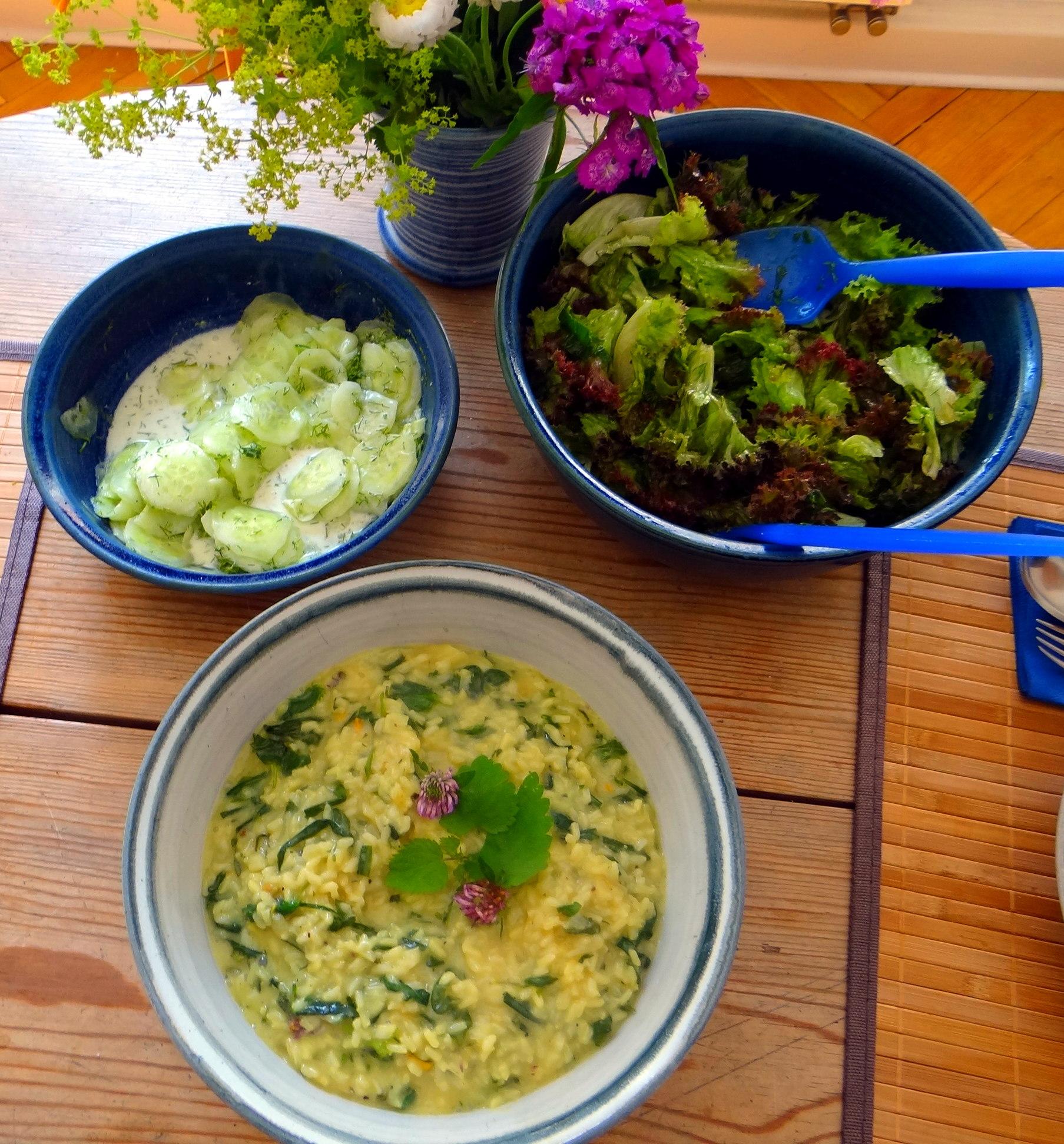 Zitronenrisotto mit Wildkräutern,Gurkensalat,Lollo Rosso,vegetarisch (5)