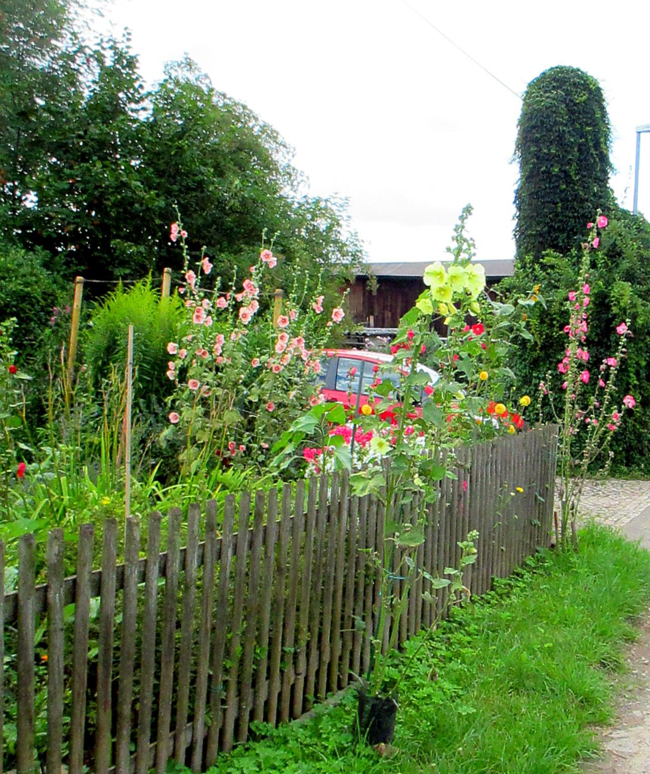 Kirschbachtal (5)