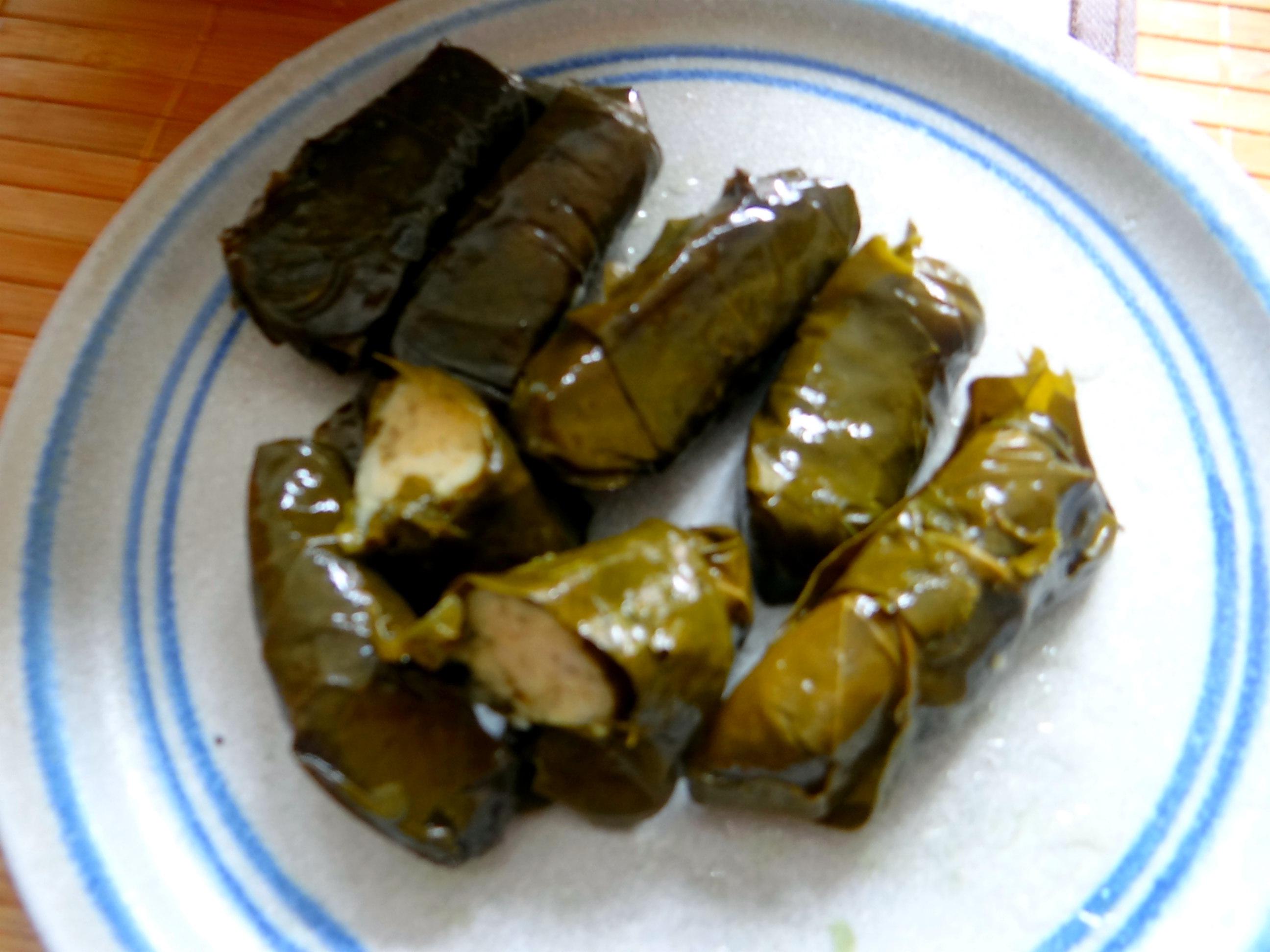 Reisnudelsalat-leicht asiatisch,gefüllte Weinblätter,Apfelmus (10)