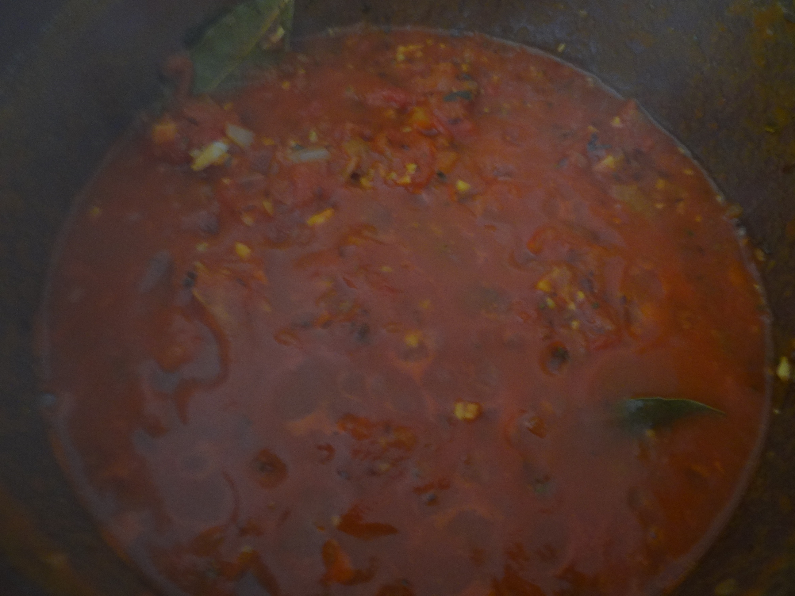 Gebratene Kloßscheiben mit Tomatensauce,Salate (18)