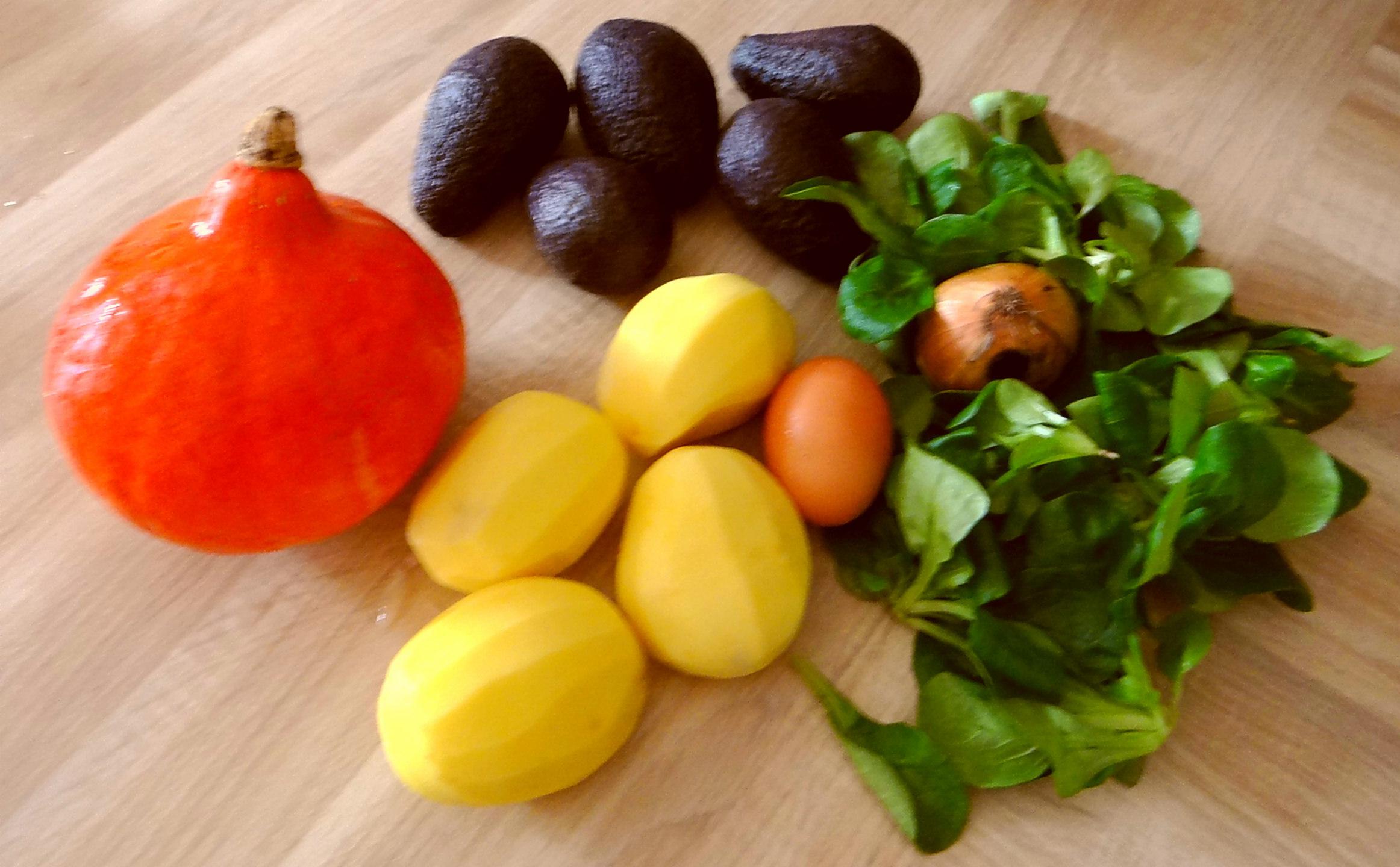 Kürbis-Kartoffel Puffer,Guacamole,Feldsalat (6)