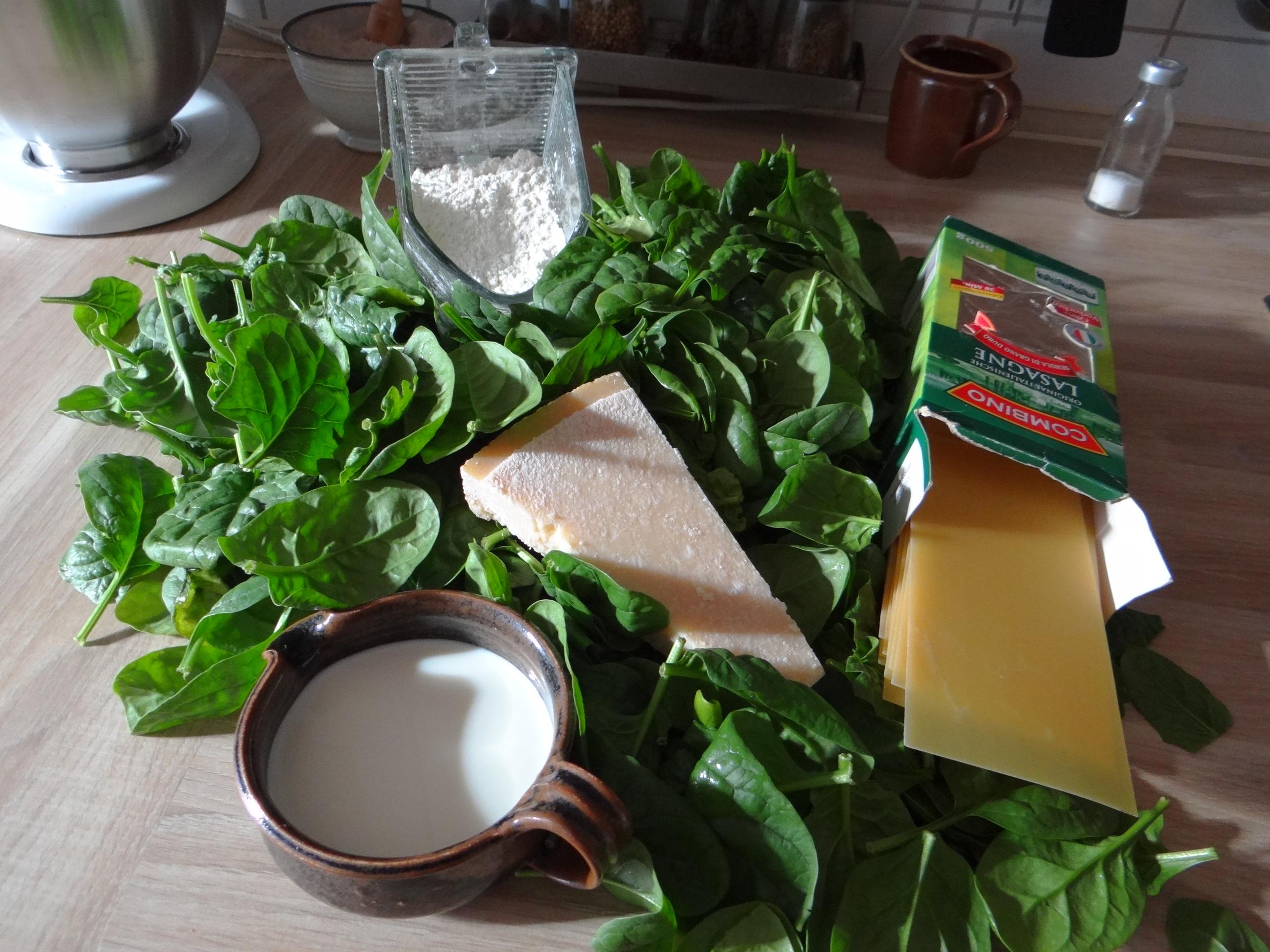 Spinat Lasagne (5)