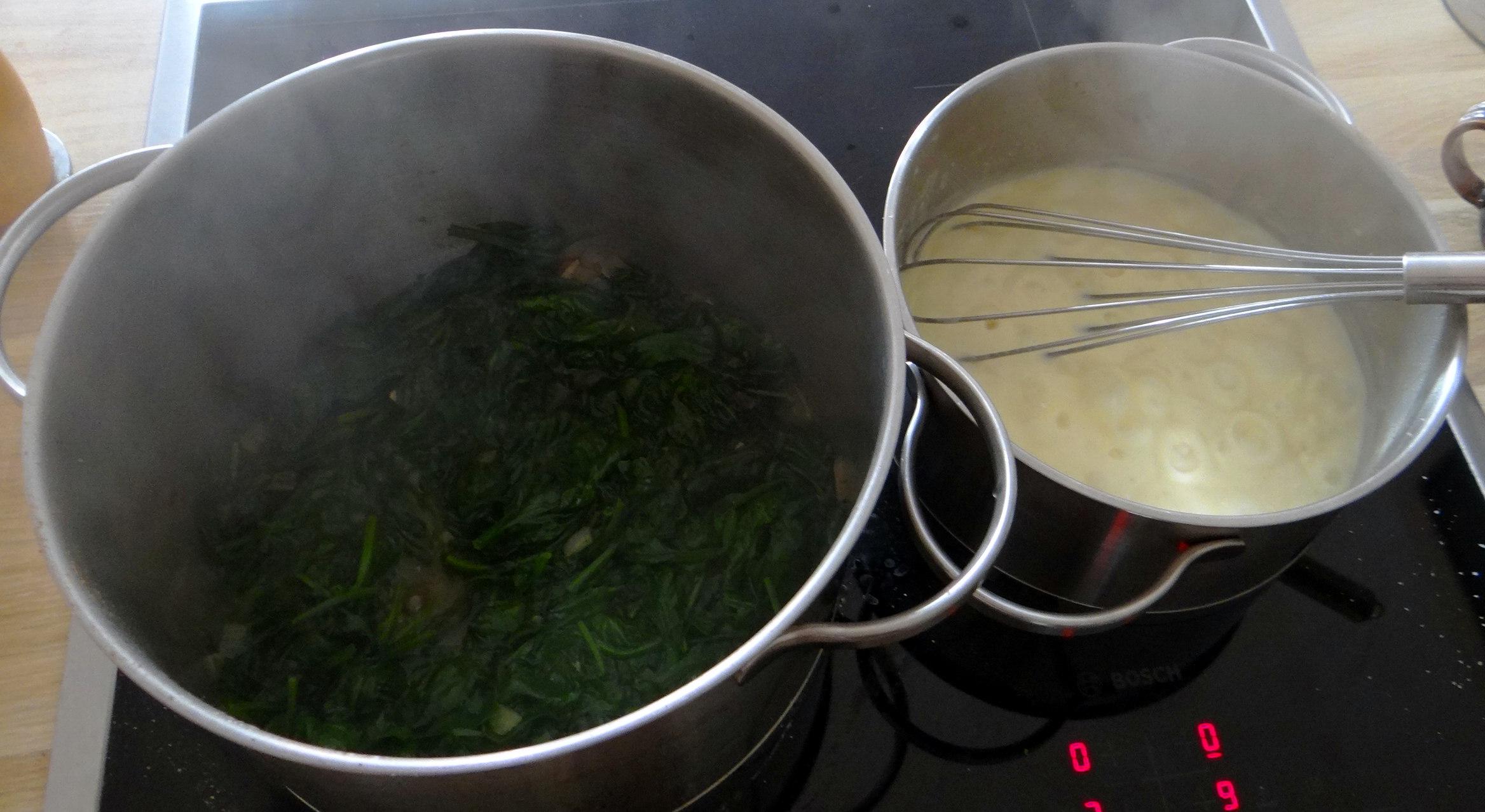Spinat Lasagne (7)