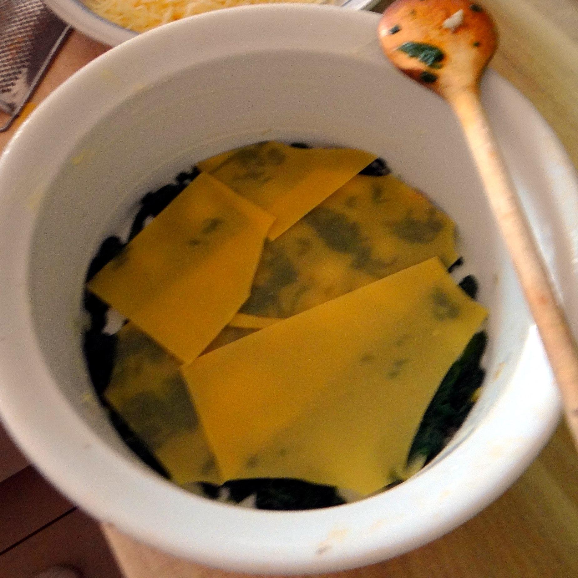 Spinat Lasagne (9)