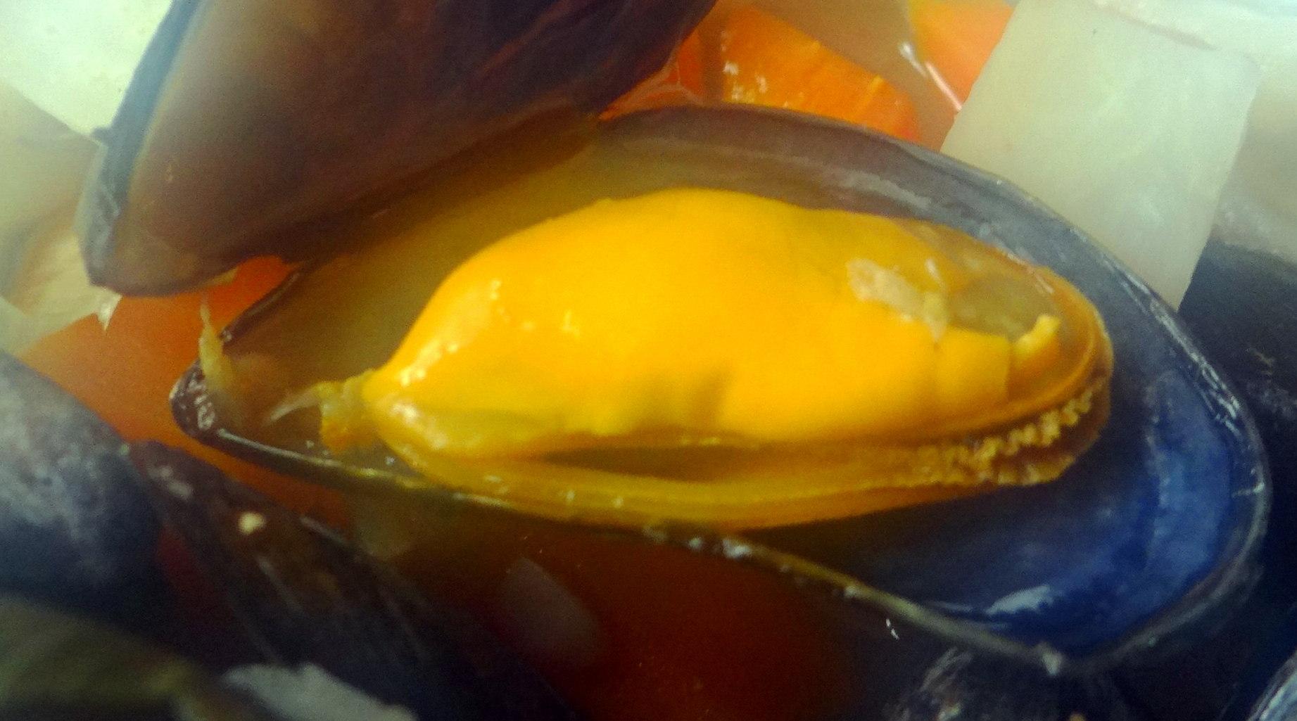 Miesmuscheln,Baguette,Quark-Schlehen Dessert (3)