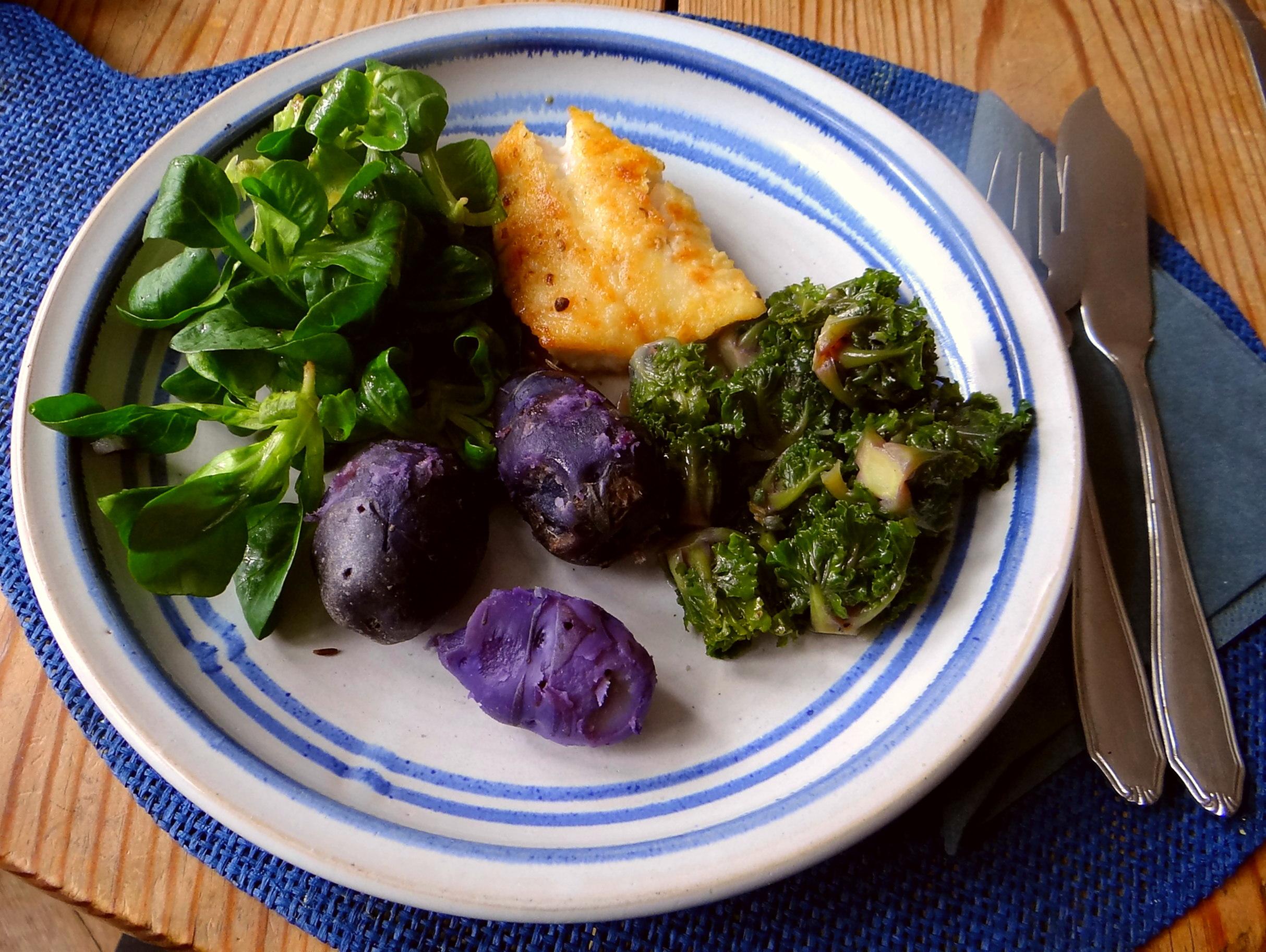 Rotbarsch,Kohlröschen,violette Kartoffeln (2)