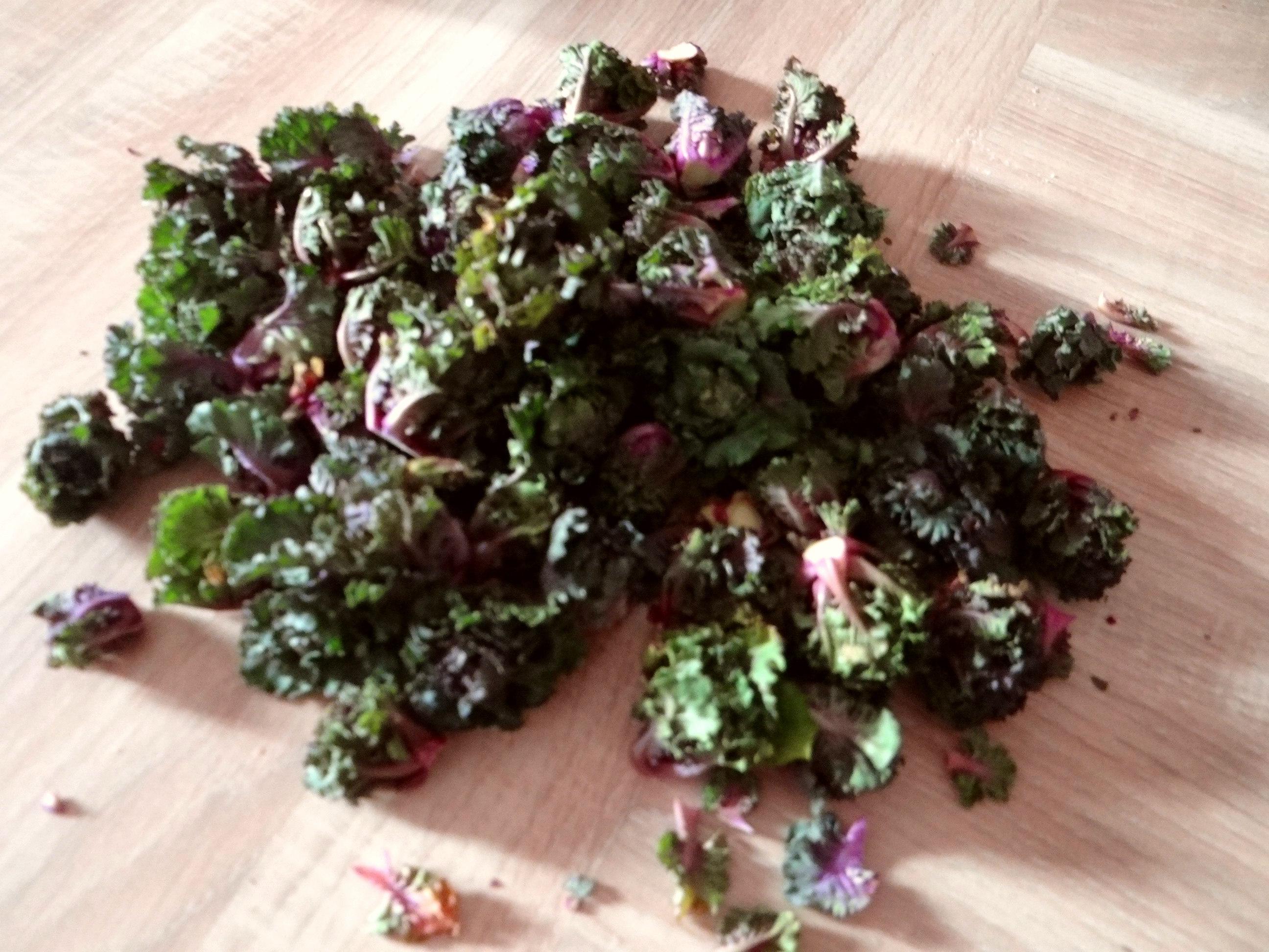 Rotbarsch,Kohlröschen,violette Kartoffeln (8)