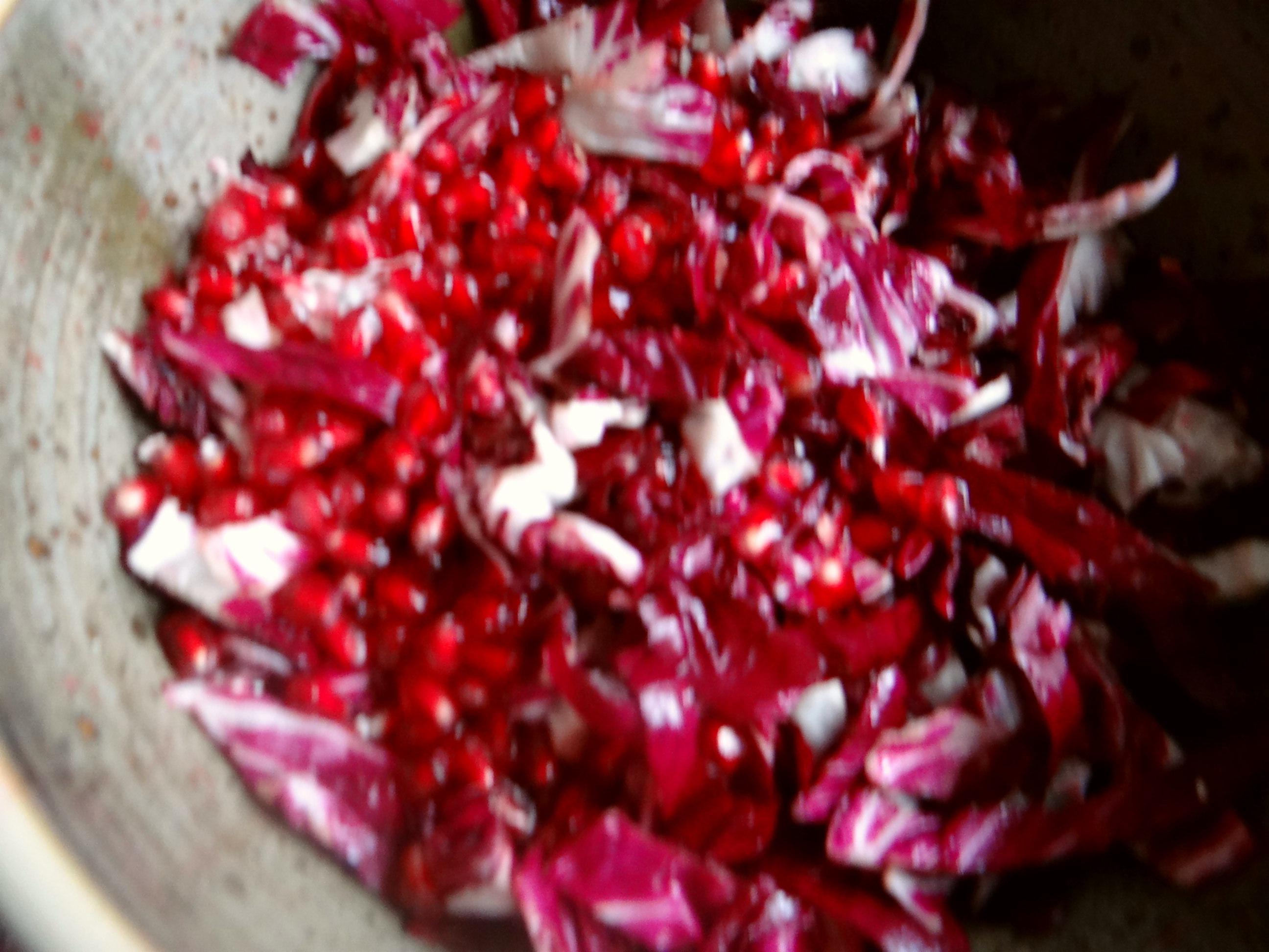 Rote Beete,Radicchio,Couscous (9)