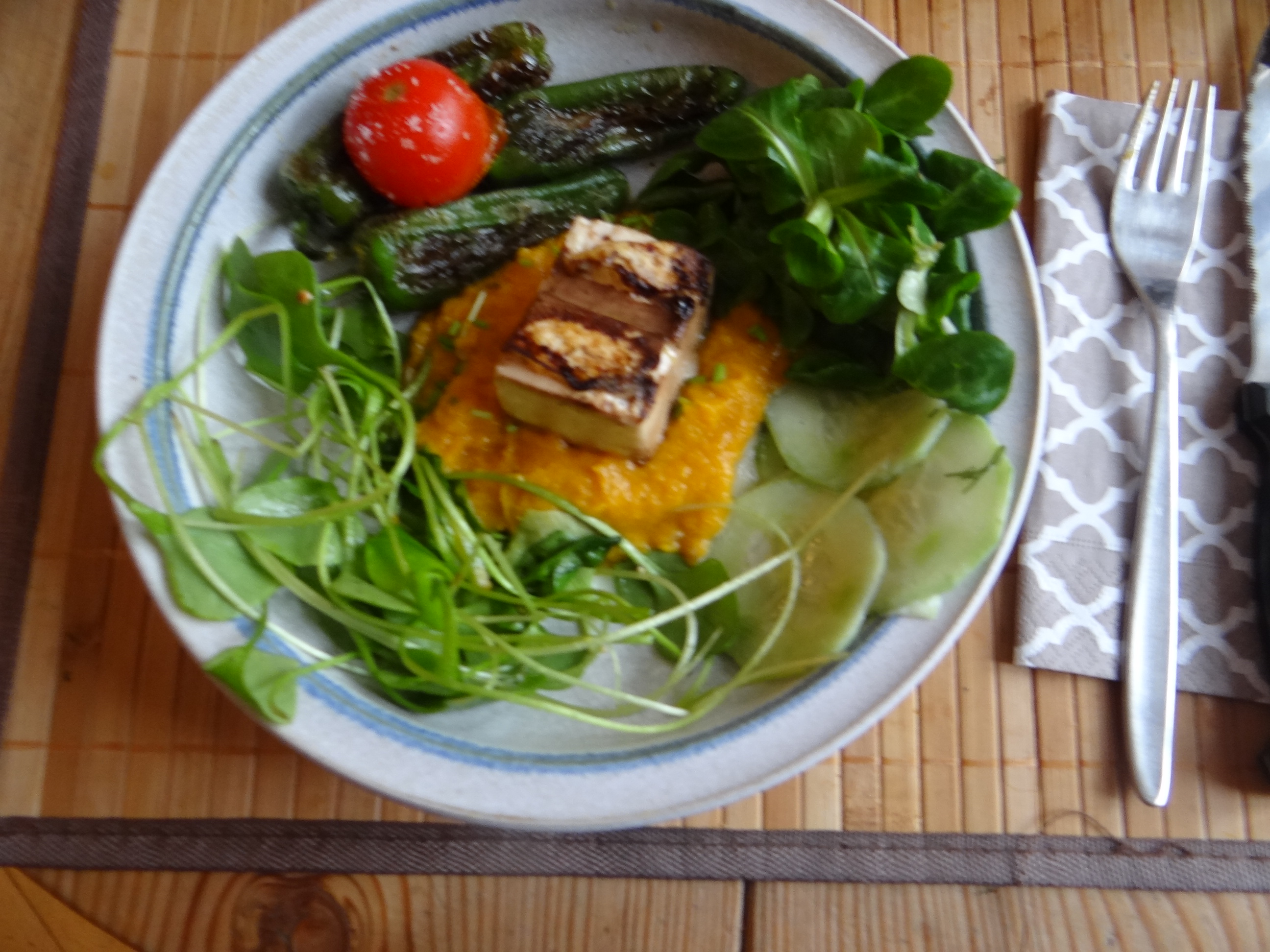 Kürbispüree,Tofu,Salate (15)