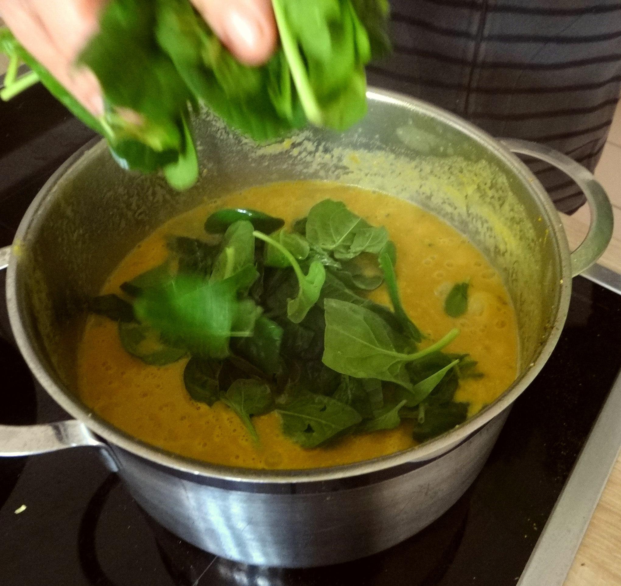 Gemüsesuppe püriert mit Spinat (1f (11)