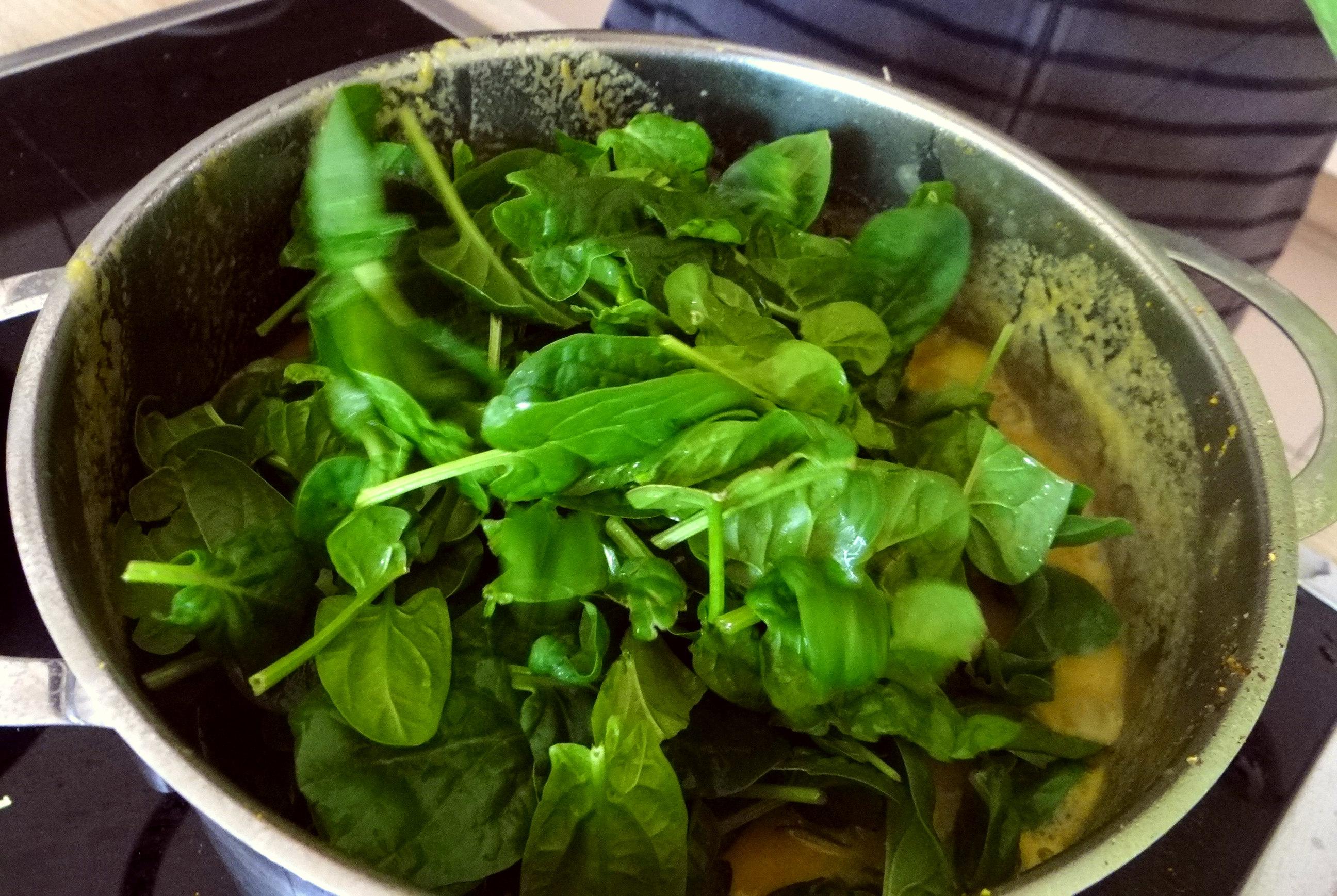 Gemüsesuppe püriert mit Spinat (1f (12)
