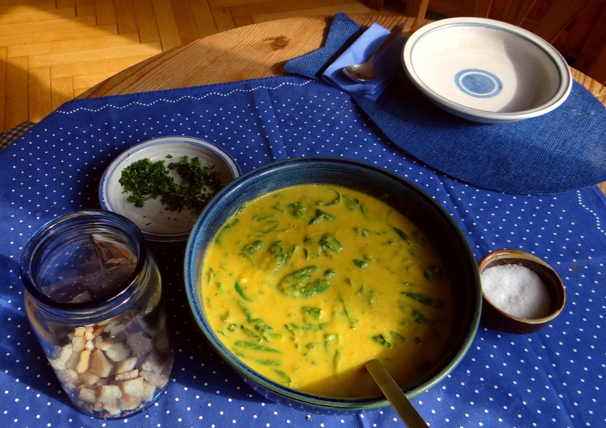 Gemüsesuppe püriert mit Spinat (1f (16)