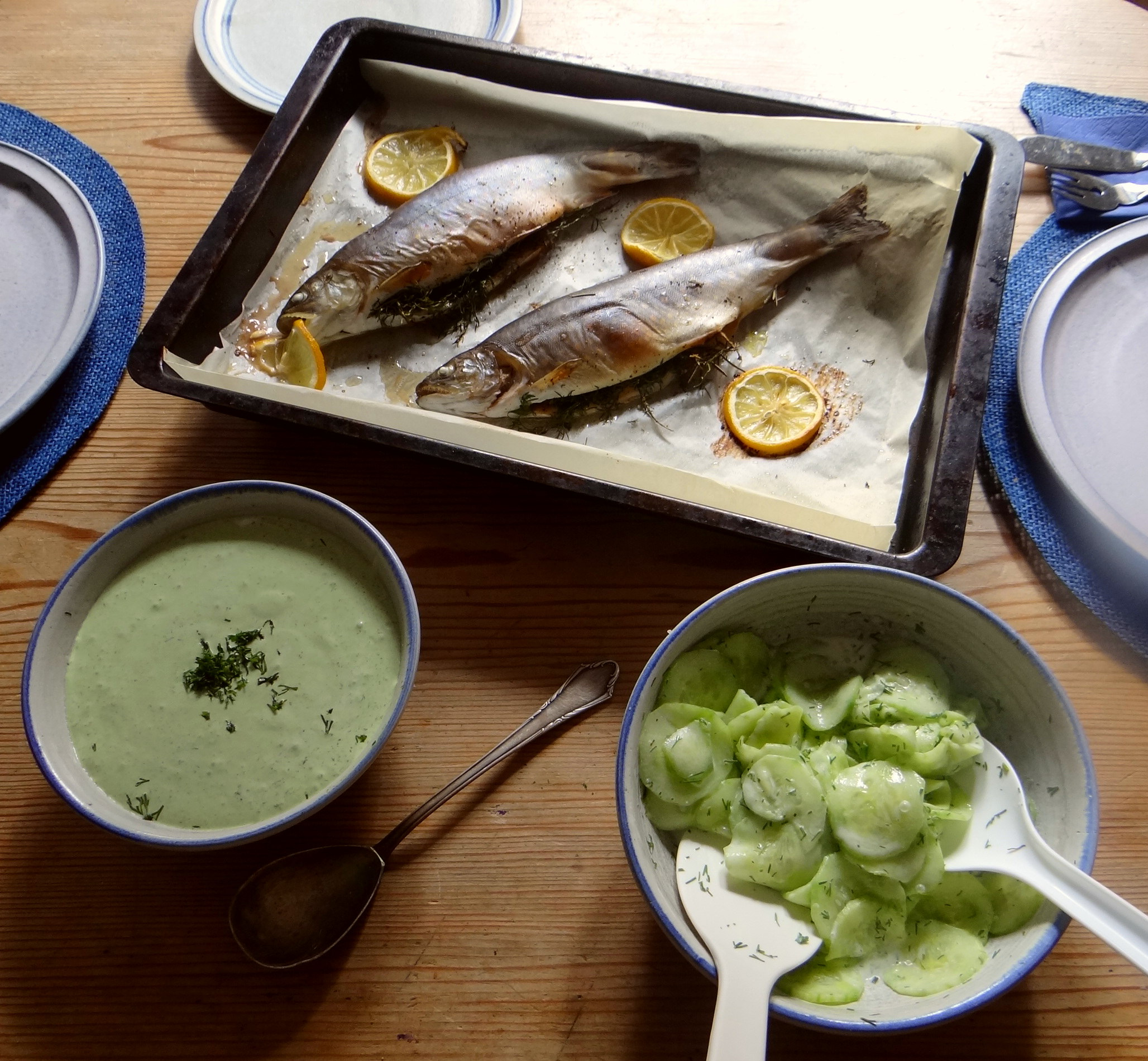 Saibling,Dillsoße,Kartoffeln,Gurkensalat (10)