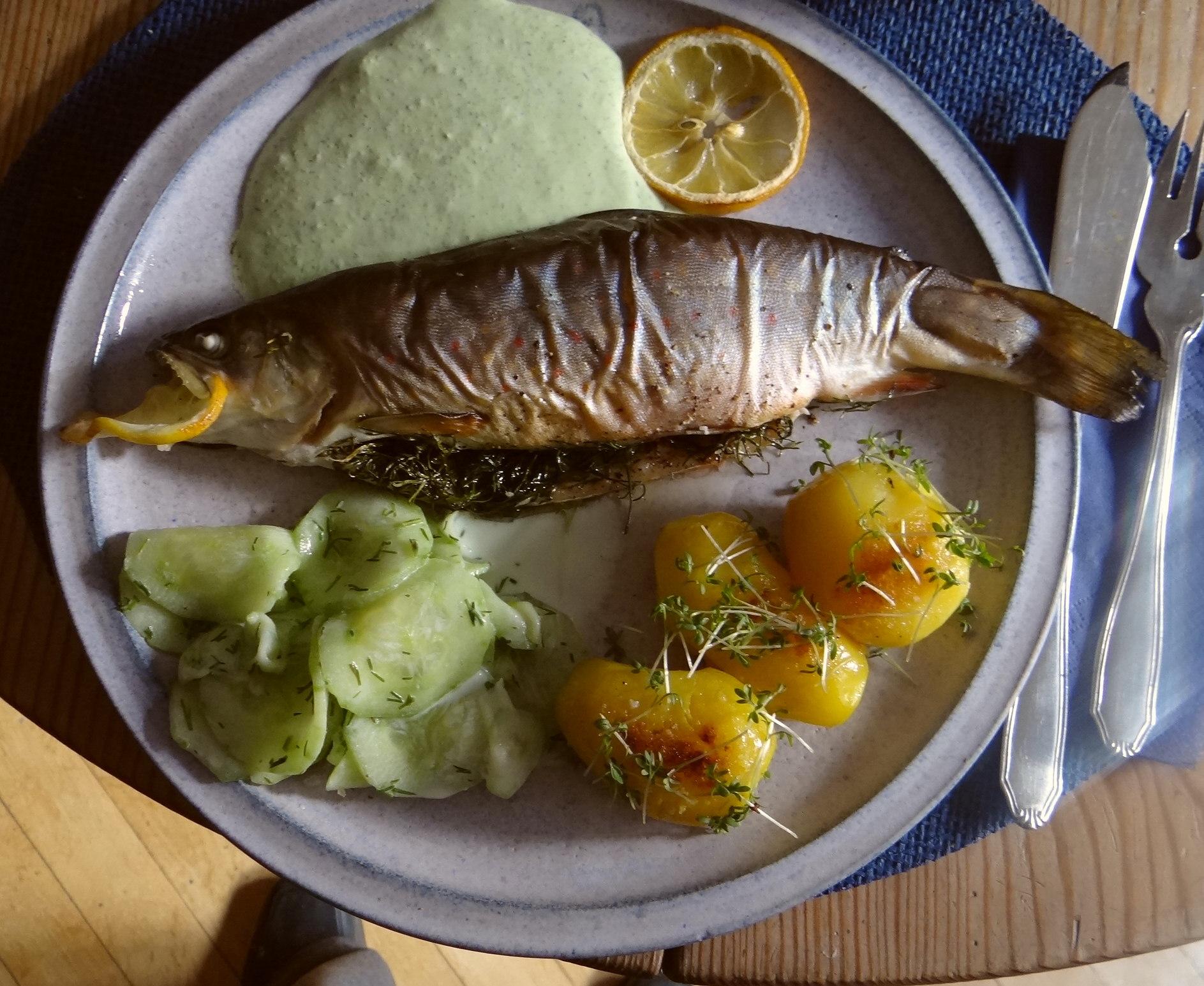 Saibling,Dillsoße,Kartoffeln,Gurkensalat (14)