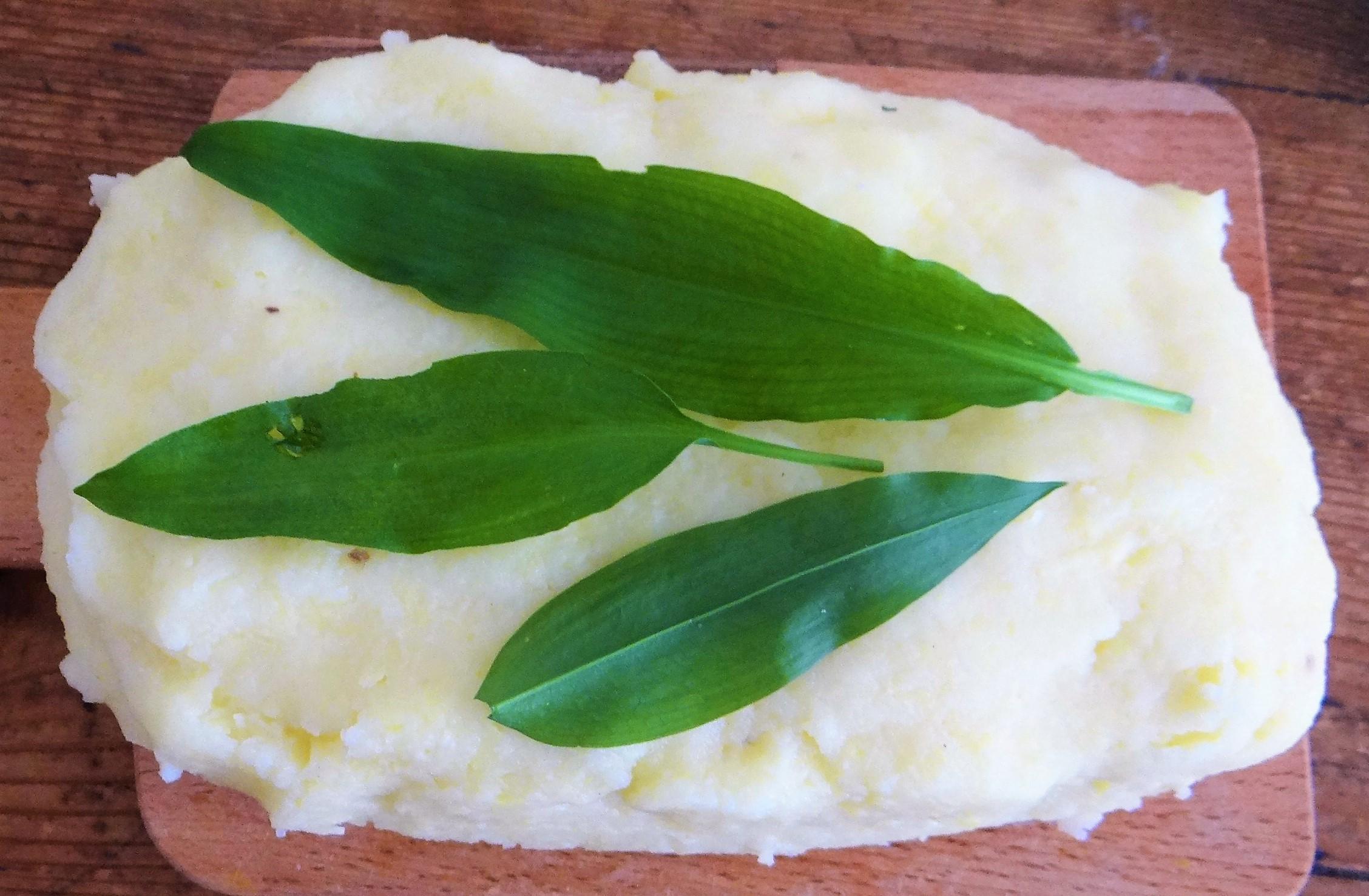 Bärlauch Gnocchis,Tomatensauce,Salat (6)